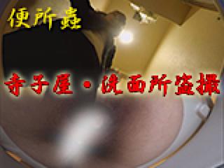 巨乳 乳首:寺子屋・洗面所盗SATU:おまんこパイパン