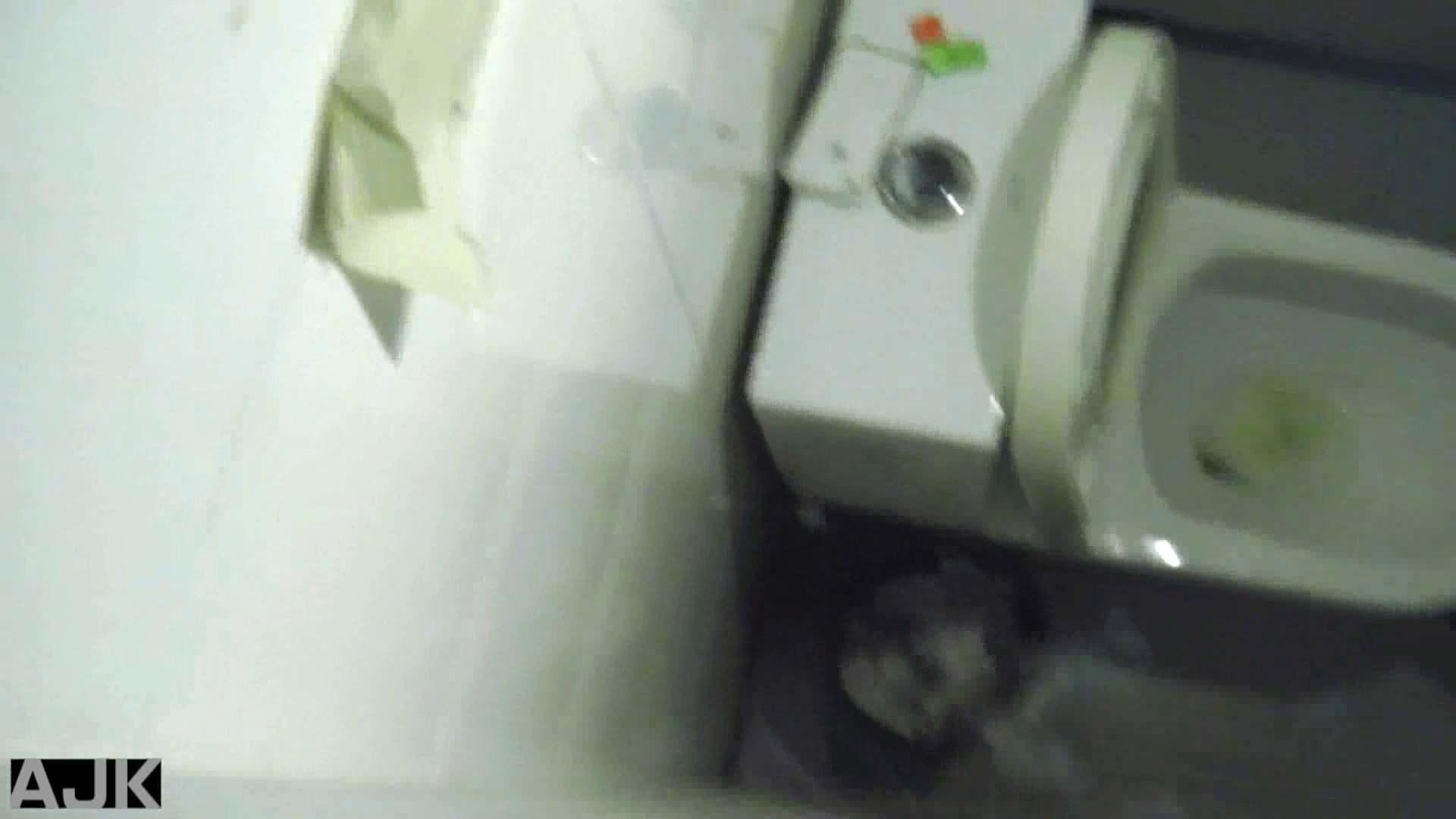 隣国上階級エリアの令嬢たちが集うデパートお手洗い Vol.13 OLの実態  56pic 16