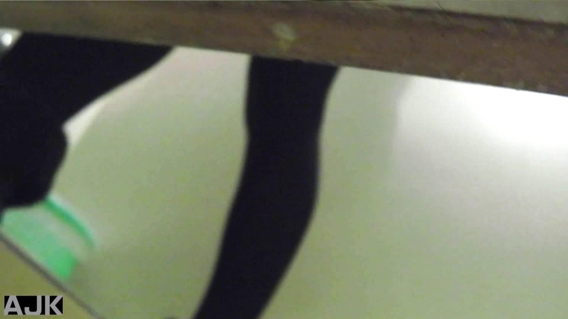 隣国上階級エリアの令嬢たちが集うデパートお手洗い Vol.14 OLの実態  97pic 12