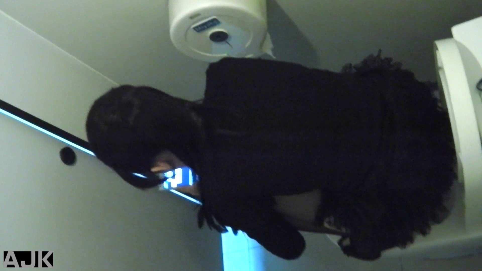 隣国上階級エリアの令嬢たちが集うデパートお手洗い Vol.23 OLの実態  92pic 80