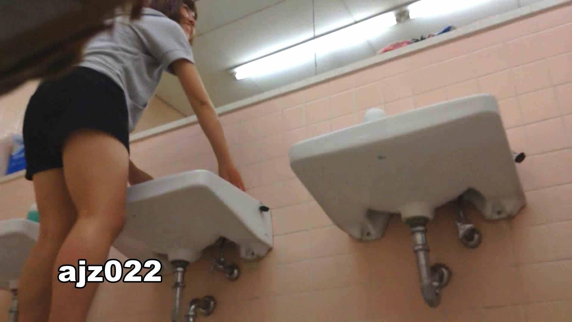 巨乳 乳首:某有名大学女性洗面所 vol.22:怪盗ジョーカー