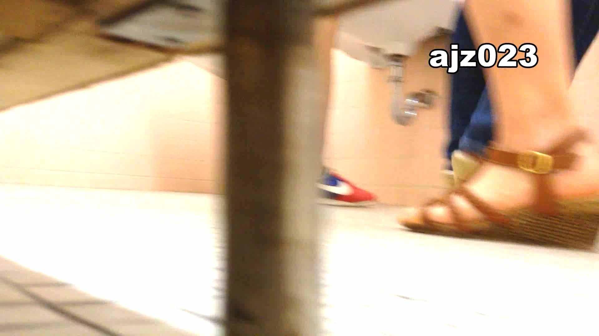 某有名大学女性洗面所 vol.23 和式 盗み撮り動画キャプチャ 52pic 21