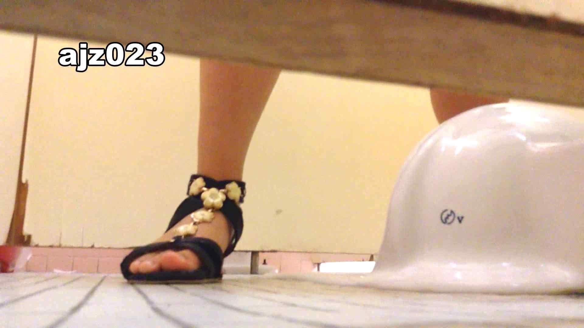 某有名大学女性洗面所 vol.23 投稿 オマンコ無修正動画無料 52pic 28