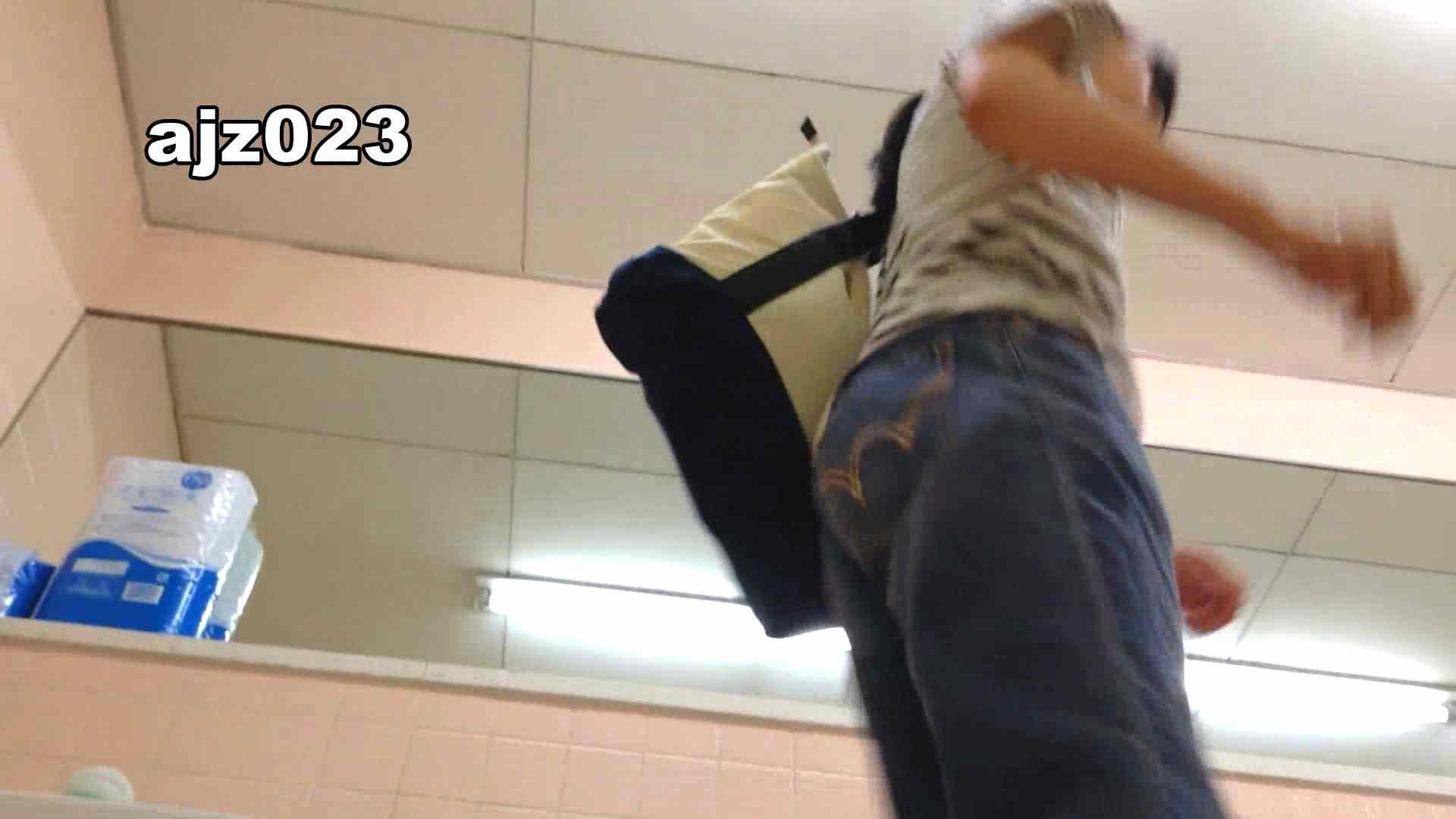 某有名大学女性洗面所 vol.23 OLの実態  52pic 42