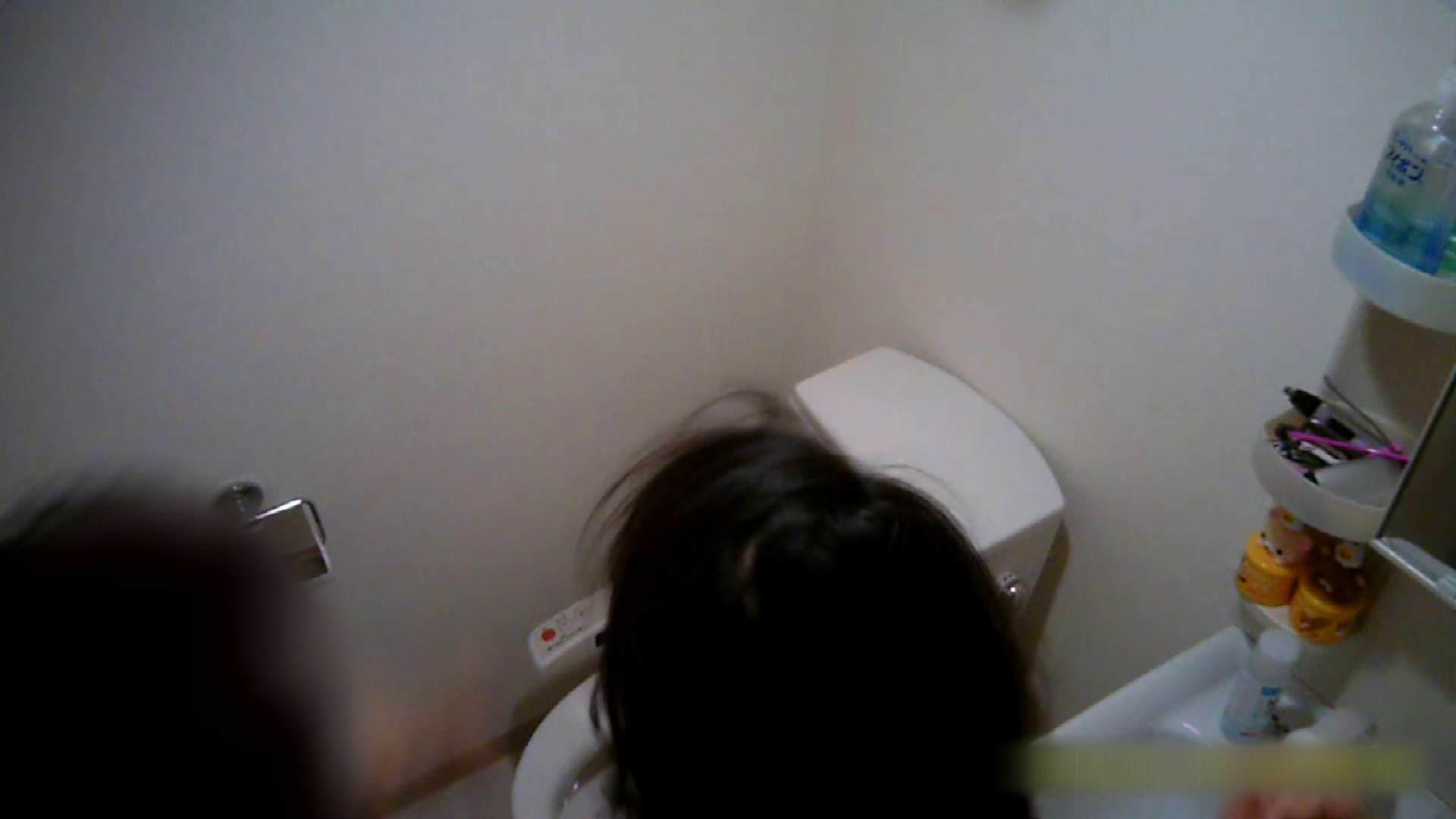 清楚な顔してかなり敏感なE子25歳(仮名)Vol.05 裸でトイレ編 トイレ  60pic 56