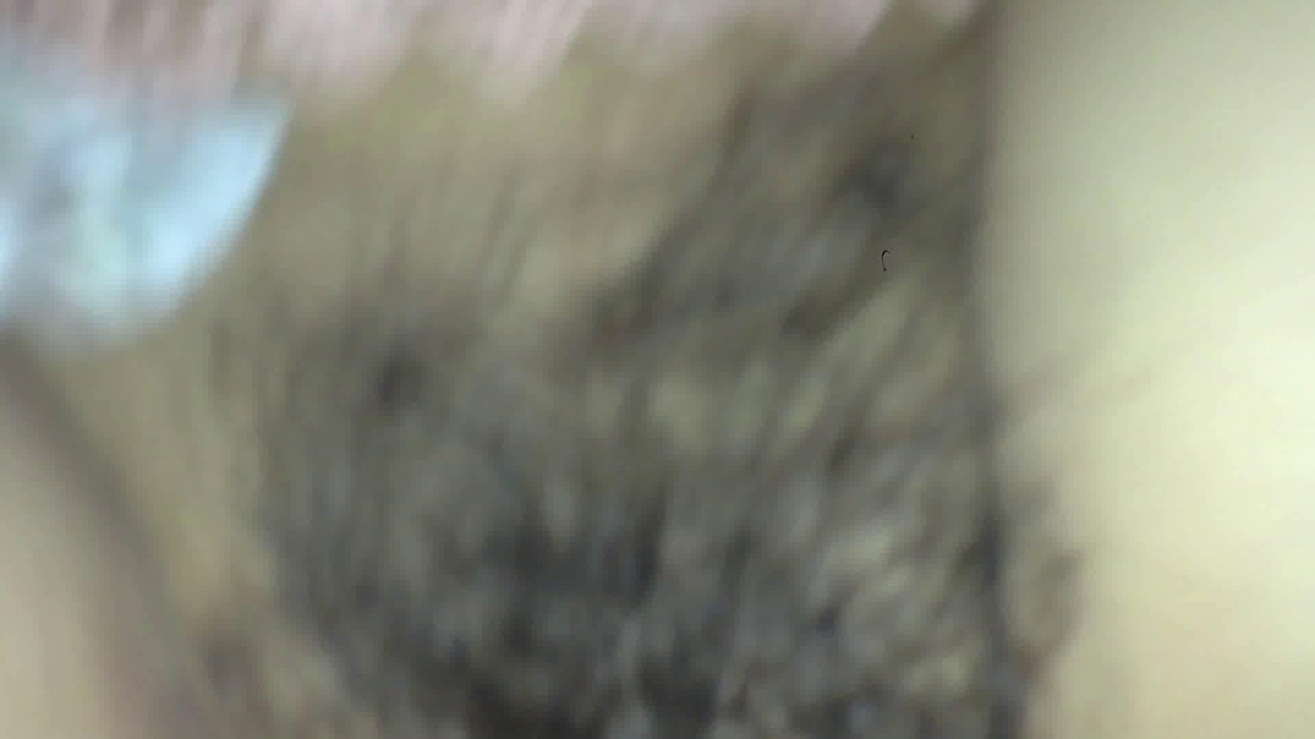 ヒトニアラズvol.5 OLの実態 | 0  95pic 39