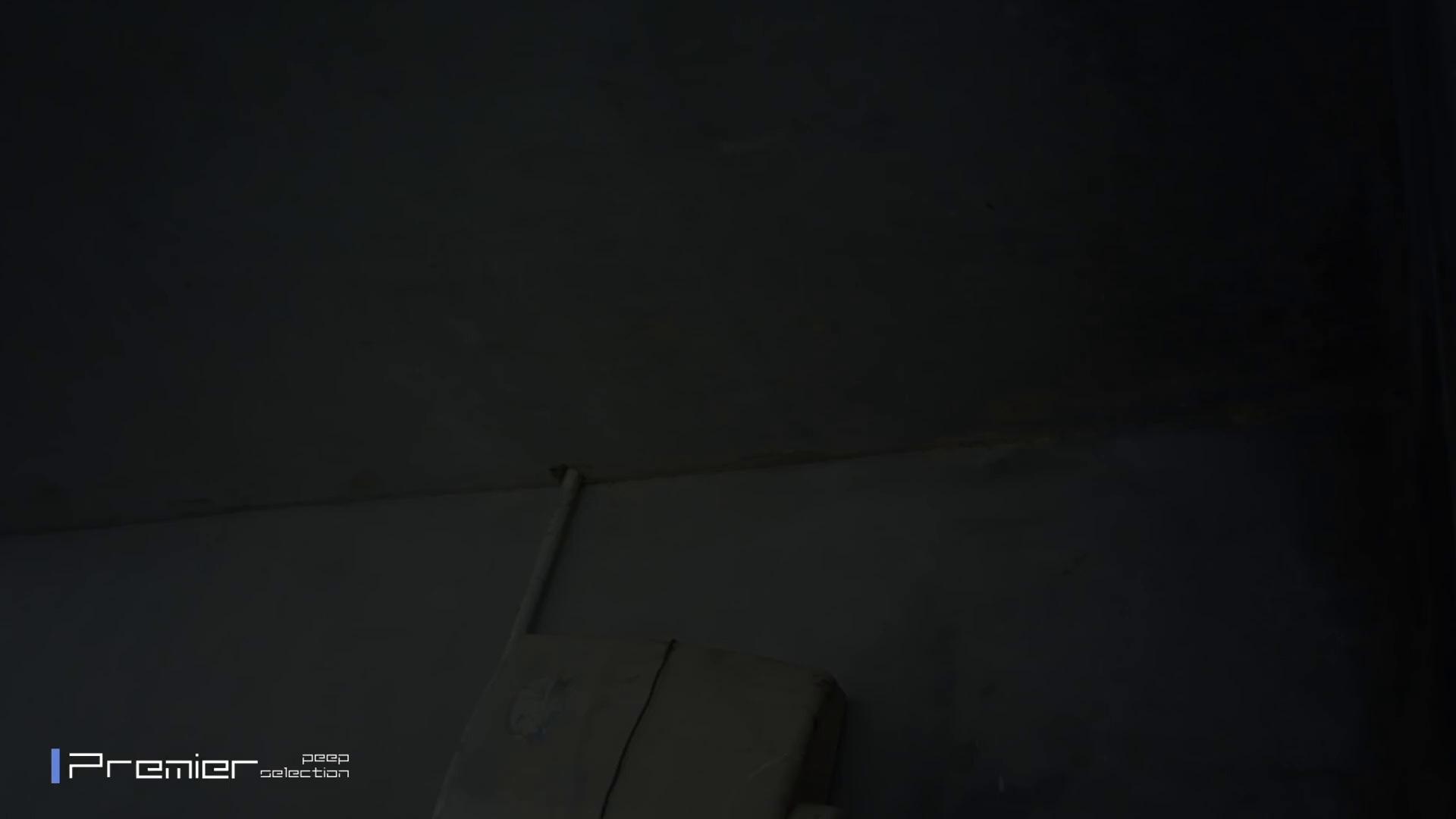 おとなしそうな女の子 トイレシーンを密着盗撮!! 美女の痴態に密着!Vol.24 チラ 盗撮おめこ無修正動画無料 55pic 5