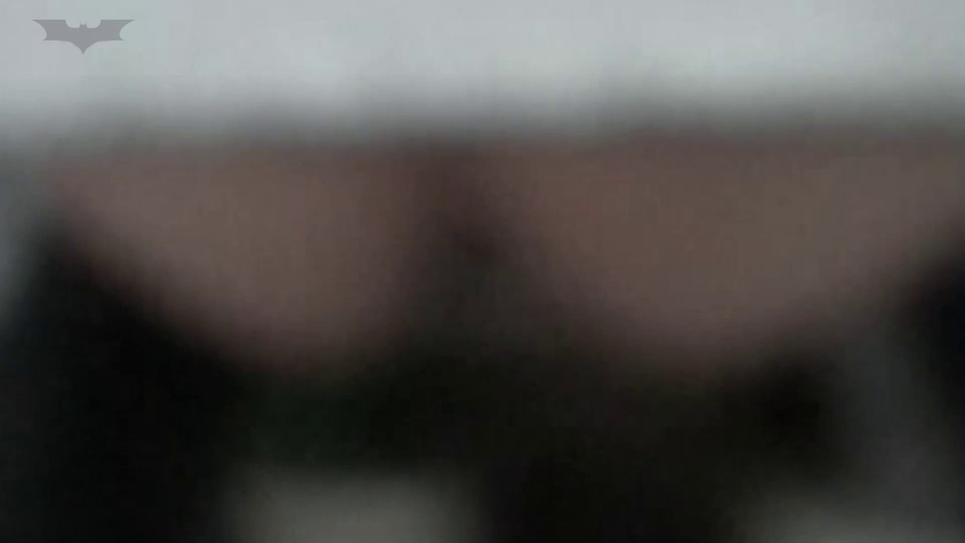 JD盗撮 美女の洗面所の秘密 Vol.29 洗面所  92pic 70