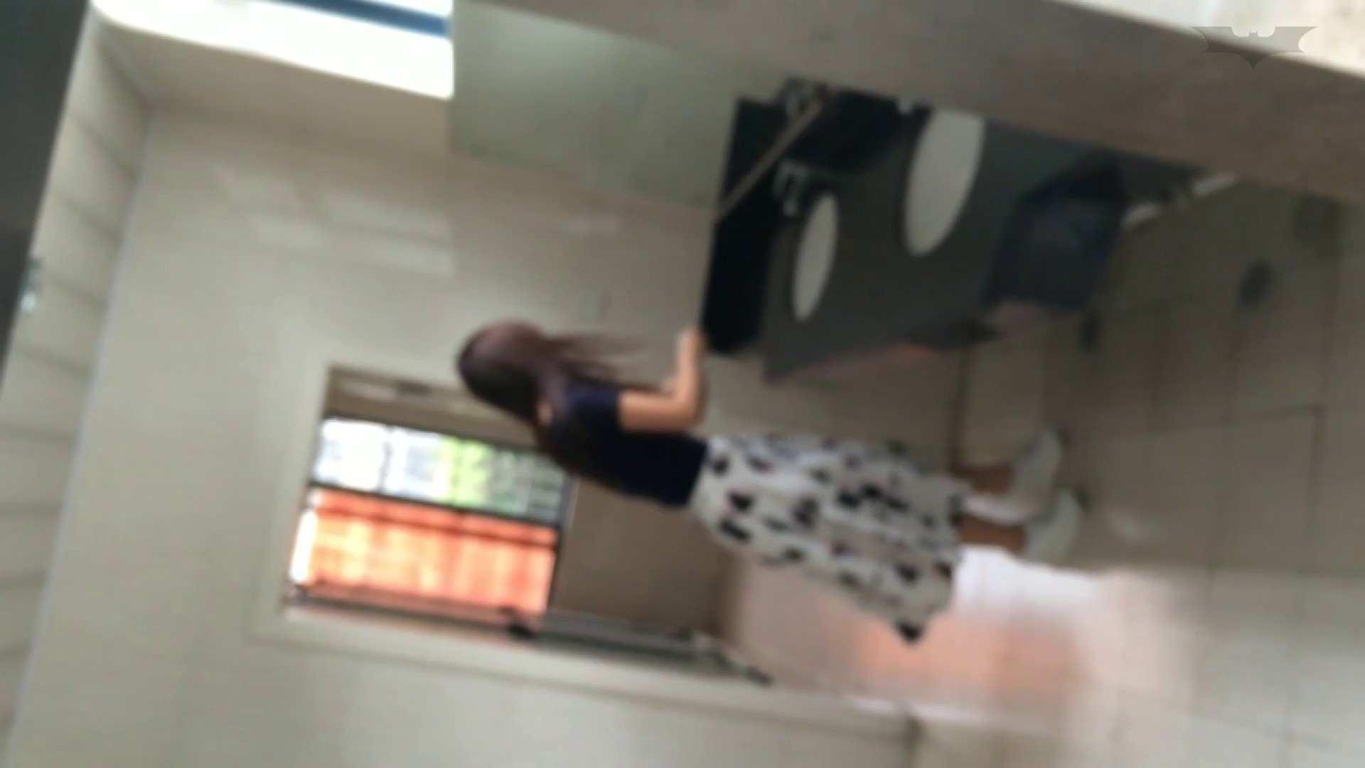 JD盗撮 美女の洗面所の秘密 Vol.45 OLの実態  80pic 10
