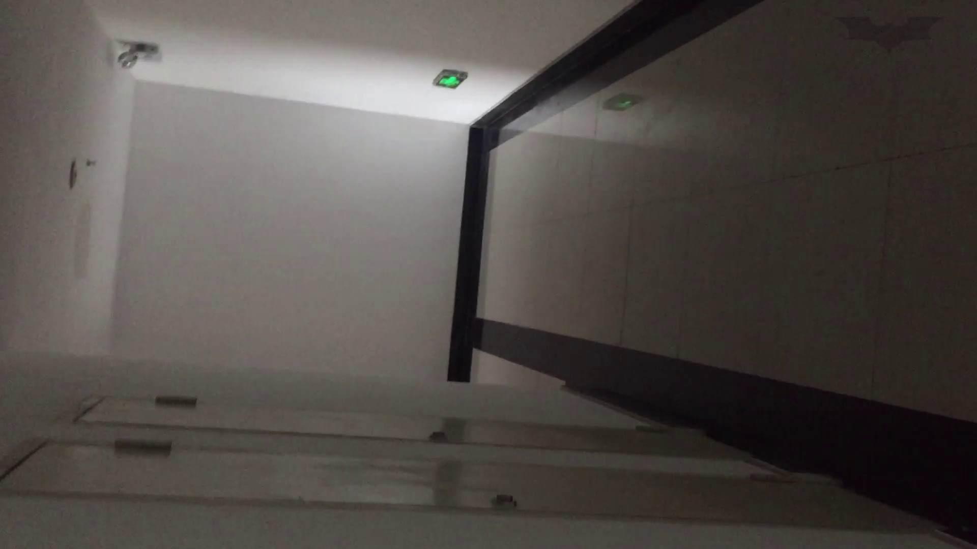 JD盗撮 美女の洗面所の秘密 Vol.68 トイレ われめAV動画紹介 69pic 4