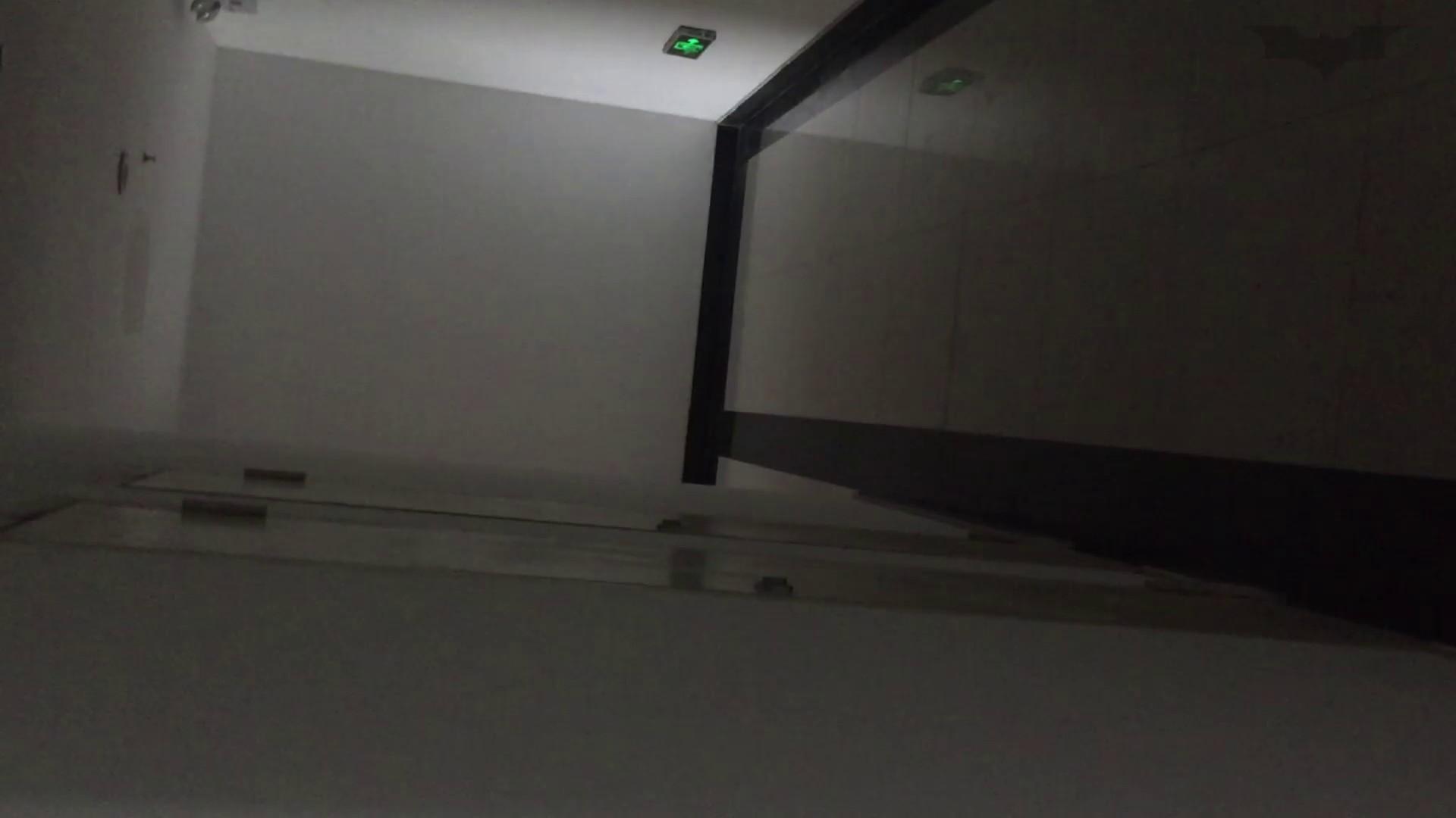 JD盗撮 美女の洗面所の秘密 Vol.68 盗撮 隠し撮りオマンコ動画紹介 69pic 7