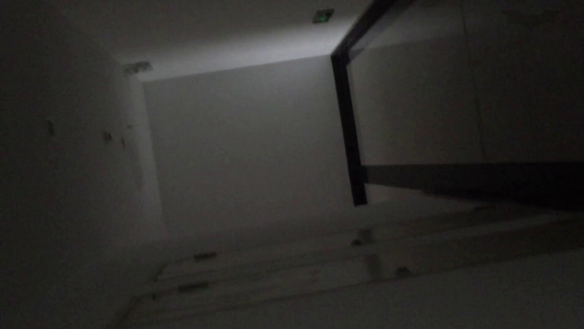 JD盗撮 美女の洗面所の秘密 Vol.74 トイレ  91pic 40