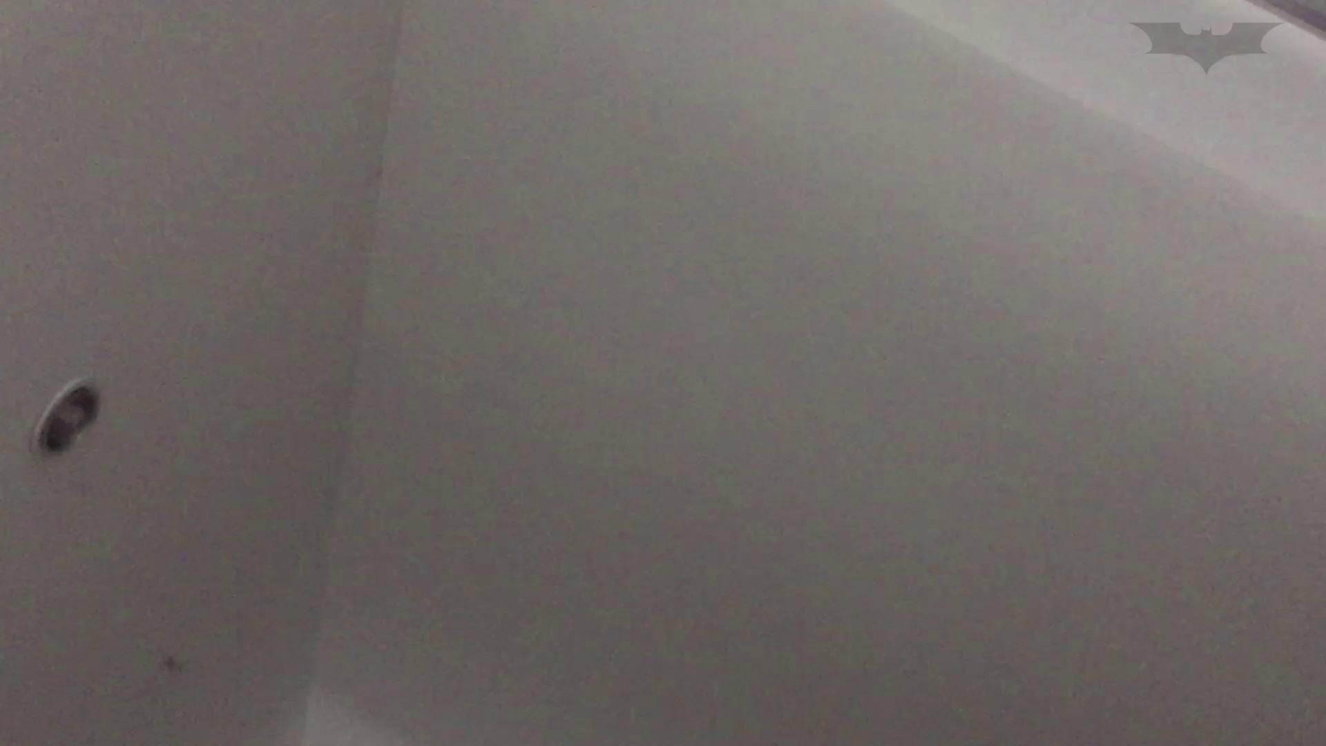 JD盗撮 美女の洗面所の秘密 Vol.74 トイレ  91pic 60