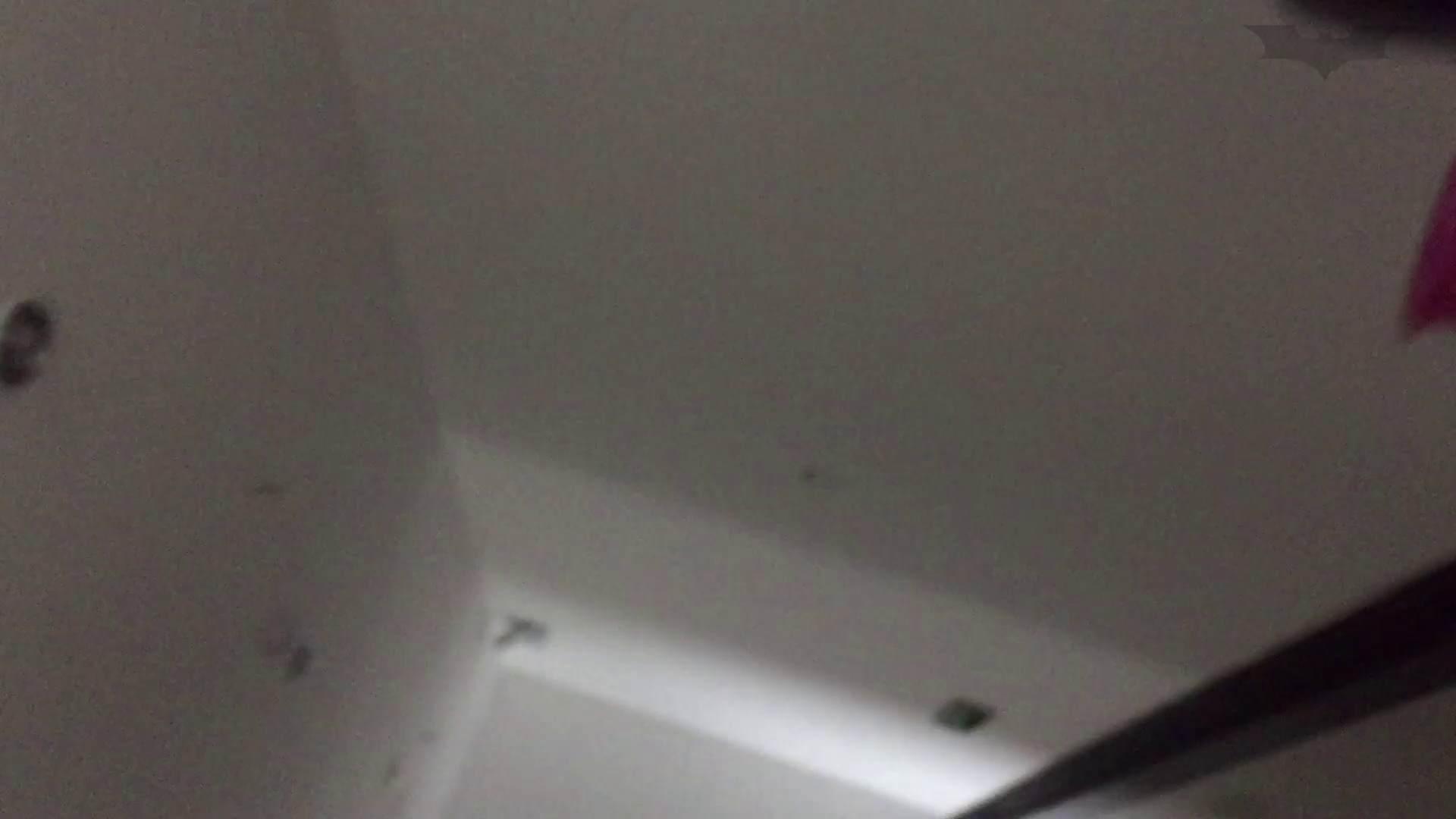 JD盗撮 美女の洗面所の秘密 Vol.74 トイレ  91pic 70