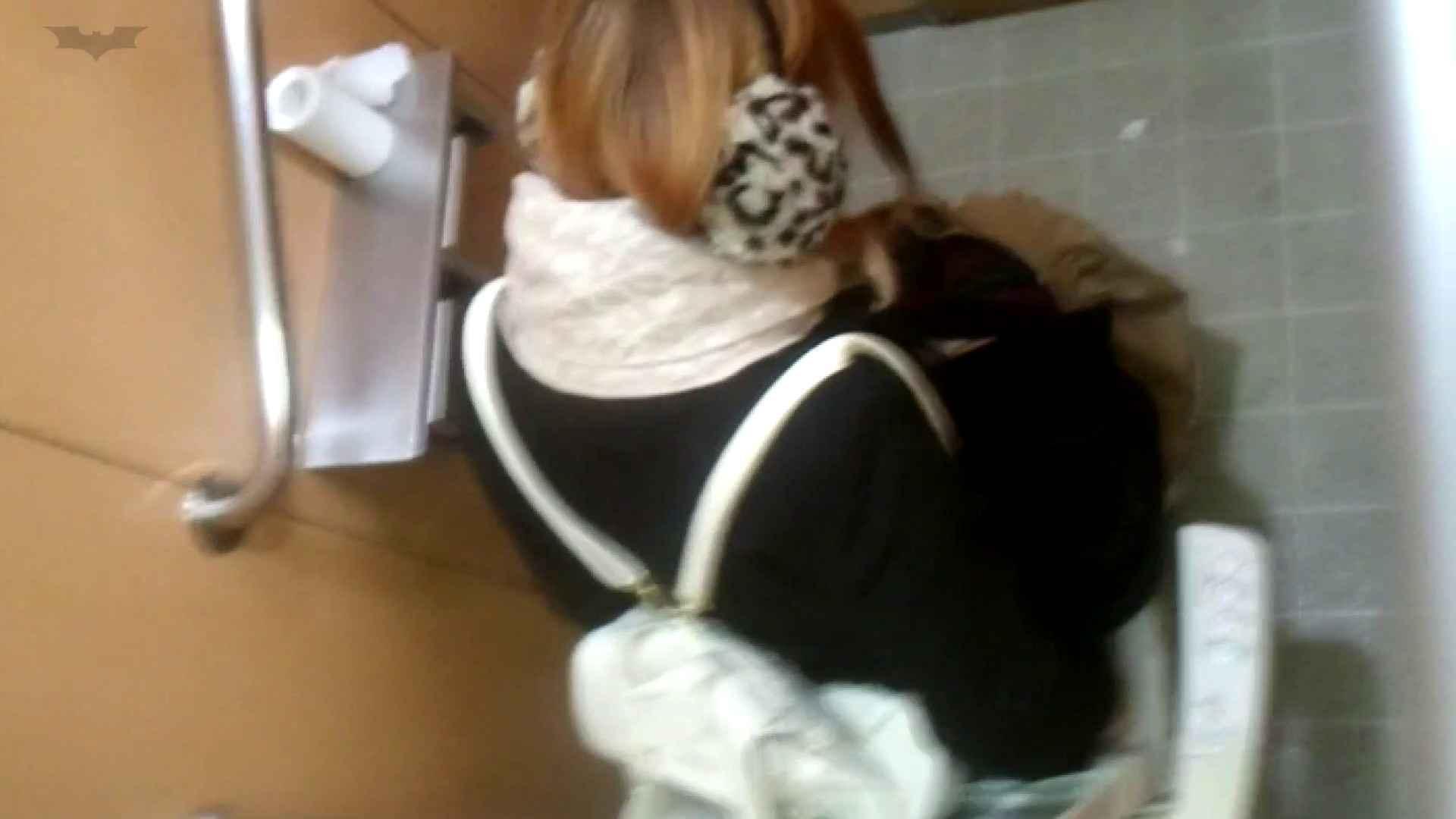 巨乳 乳首:化粧室絵巻 商い場編 VOL.21:怪盗ジョーカー