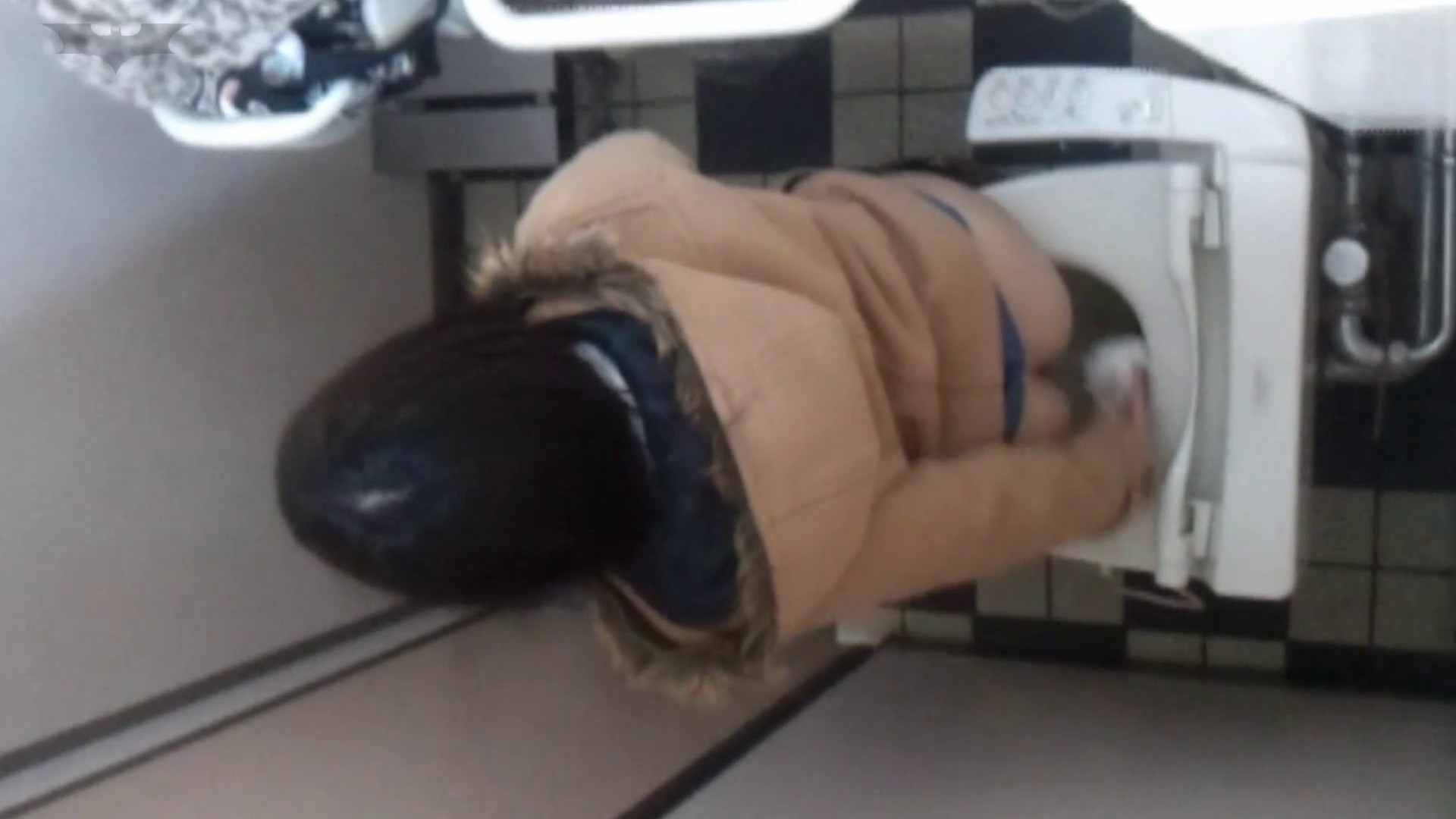化粧室絵巻 駅舎編 VOL.17 後ろ姿美人のおねぇたん!! OLの実態  57pic 52