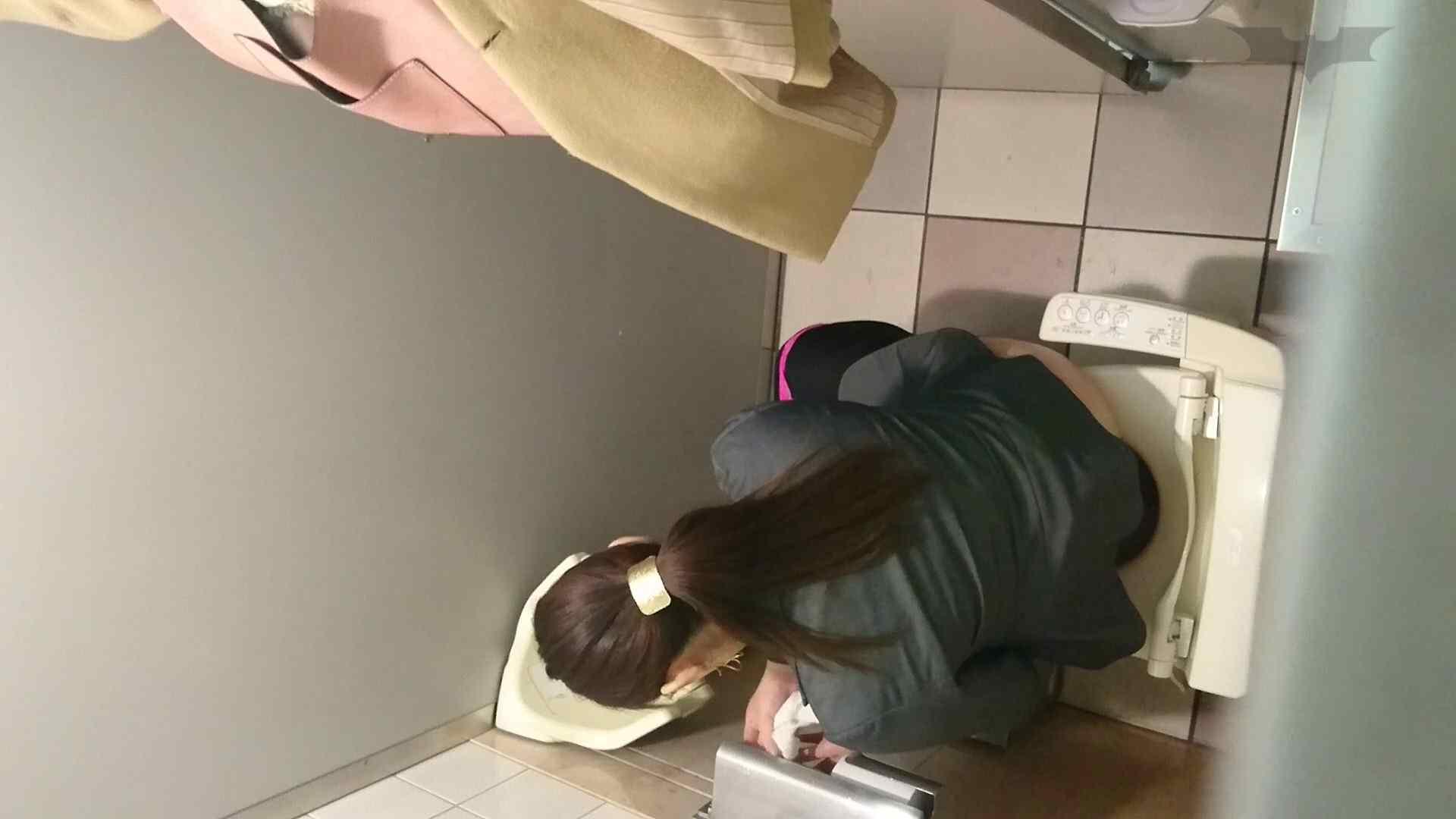 巨乳 乳首:化粧室絵巻 ショッピングモール編 VOL.15:怪盗ジョーカー