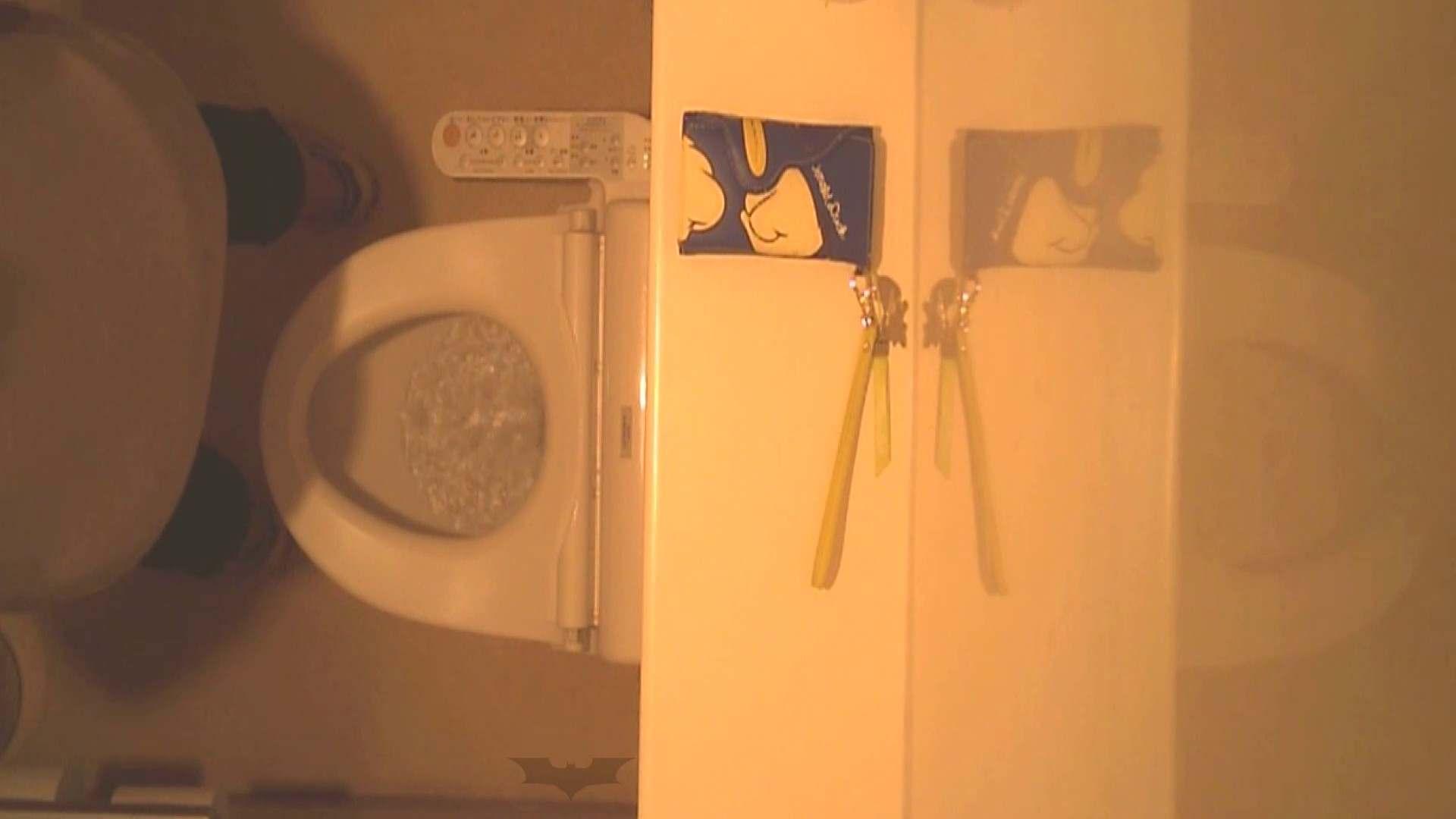 潜入!!全国女子洗面所盗撮 Vol.07 OLの実態 覗きワレメ動画紹介 76pic 14