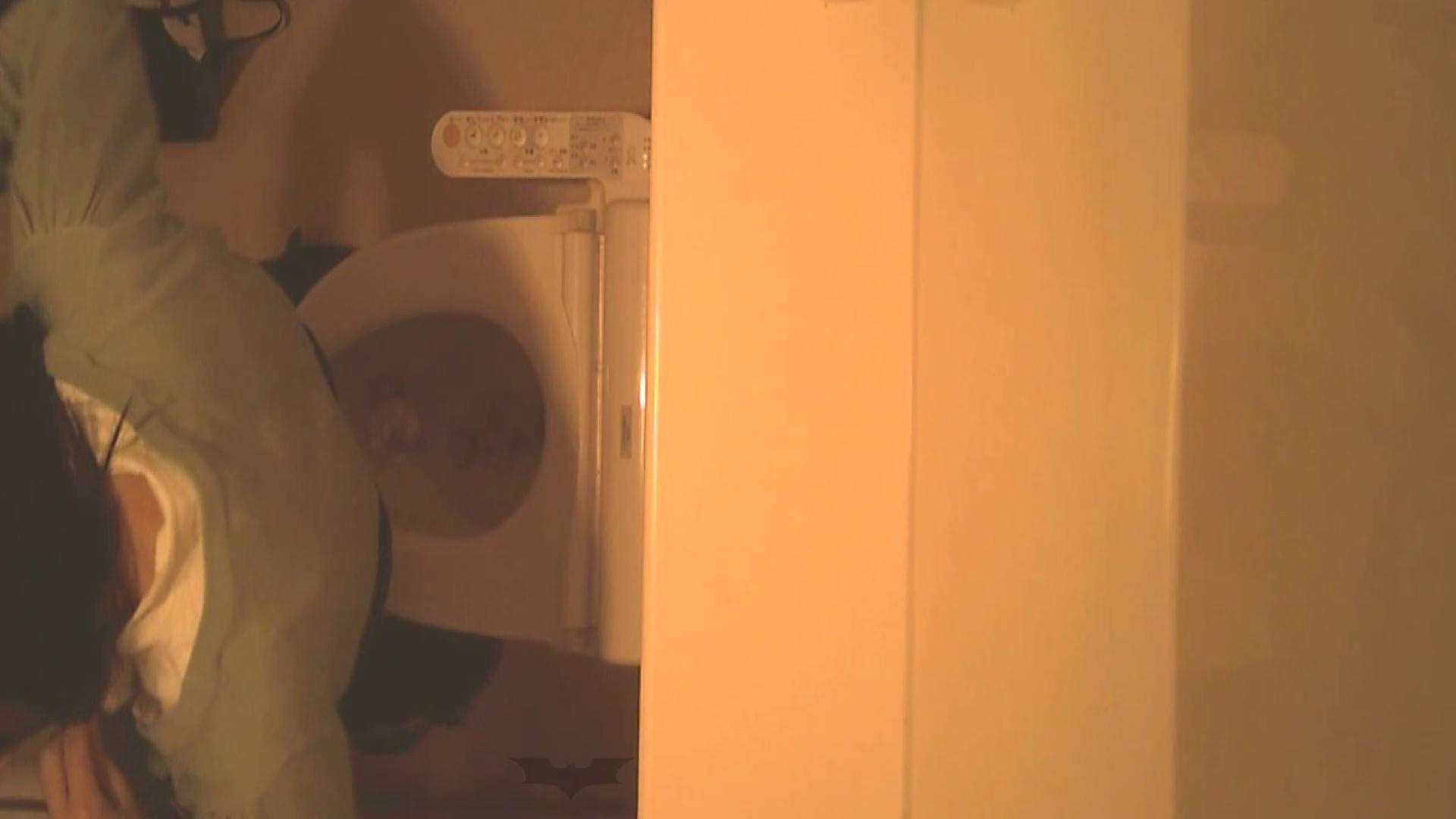 潜入!!全国女子洗面所盗撮 Vol.07 潜入 隠し撮りセックス画像 76pic 34