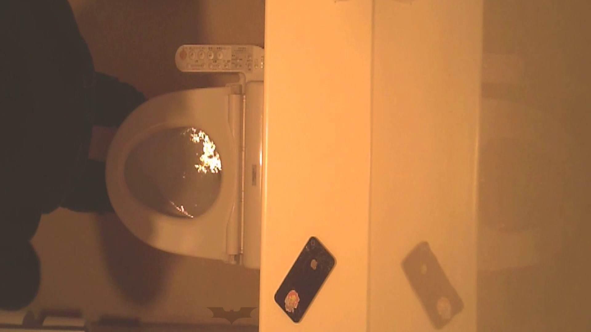 潜入!!全国女子洗面所盗撮 Vol.07 OLの実態 覗きワレメ動画紹介 76pic 38
