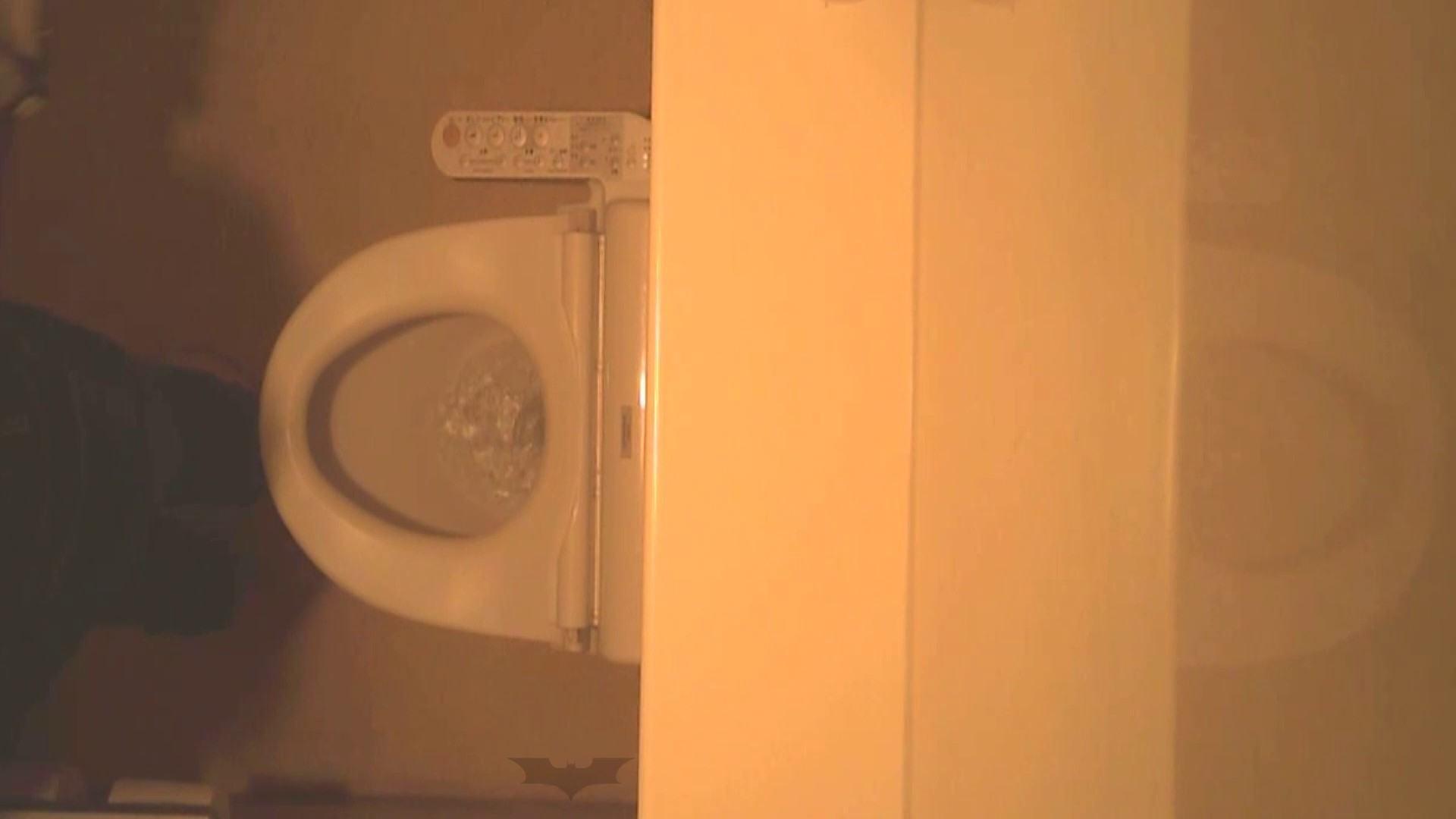 潜入!!全国女子洗面所盗撮 Vol.07 OLの実態 覗きワレメ動画紹介 76pic 44