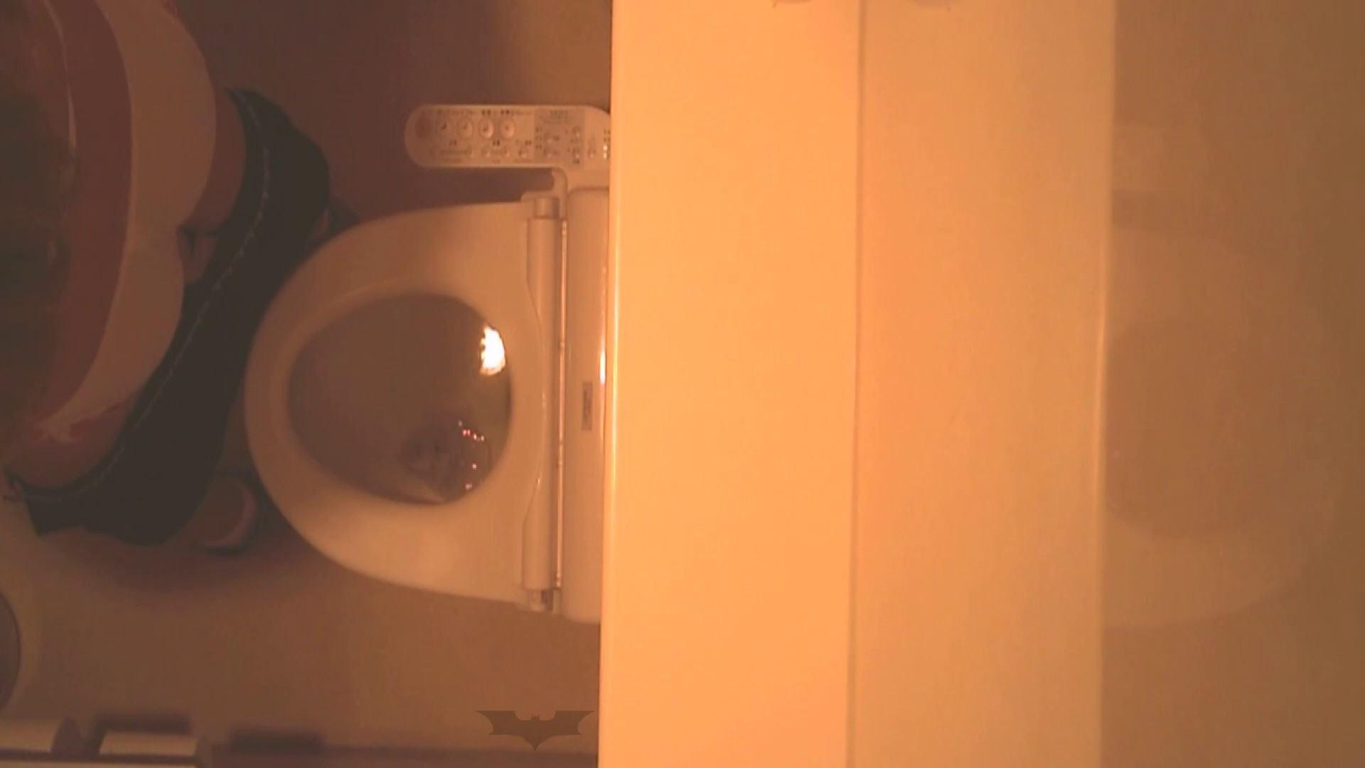 潜入!!全国女子洗面所盗撮 Vol.07 潜入 隠し撮りセックス画像 76pic 58