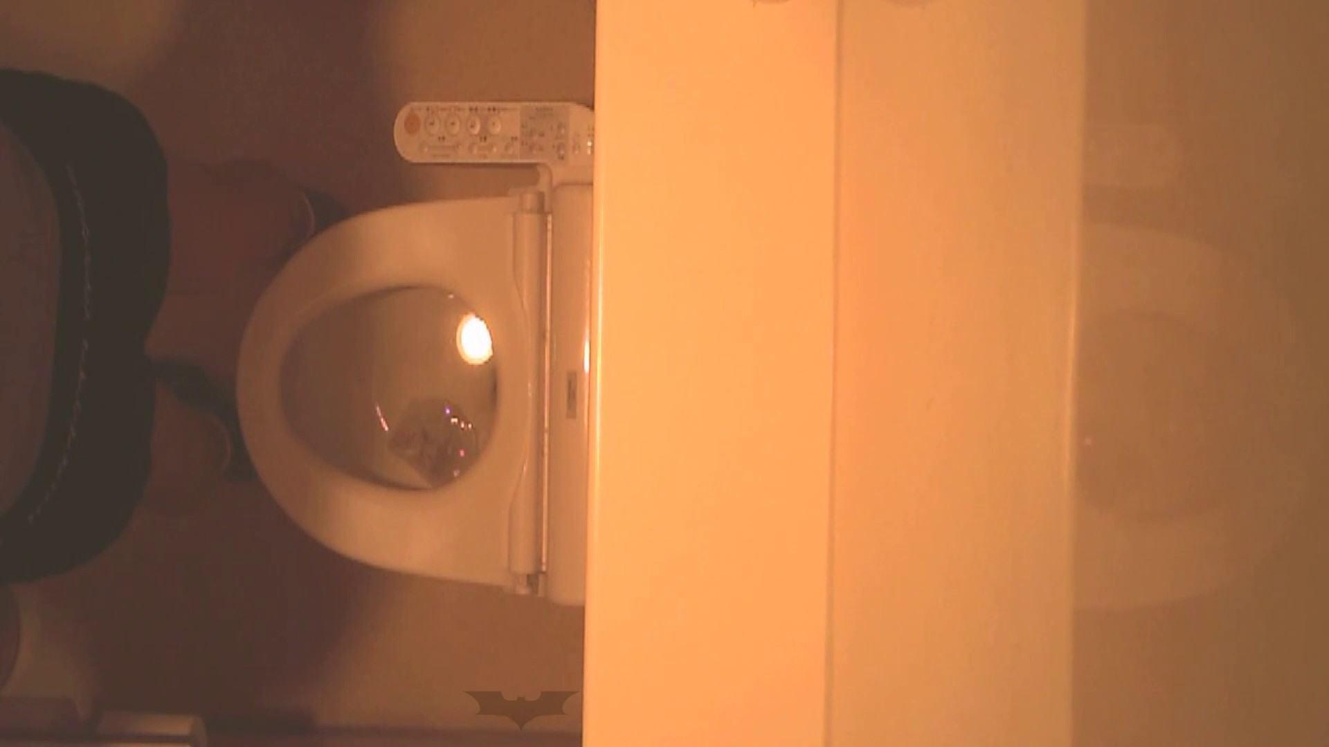 潜入!!全国女子洗面所盗撮 Vol.07 潜入 隠し撮りセックス画像 76pic 64