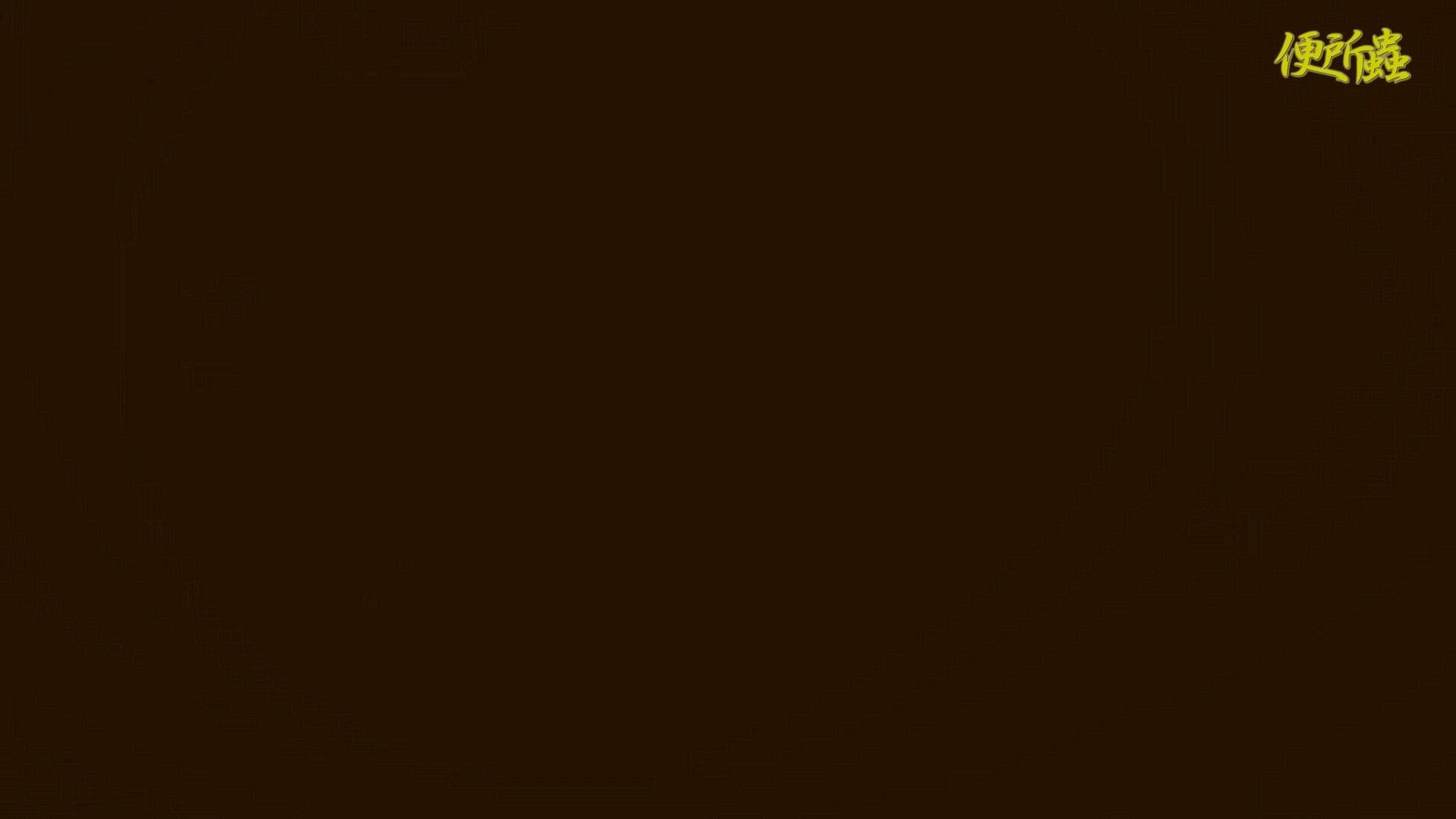 vol.12 便所蟲さんのリターン~寺子屋洗面所盗撮~ 便所  99pic 45