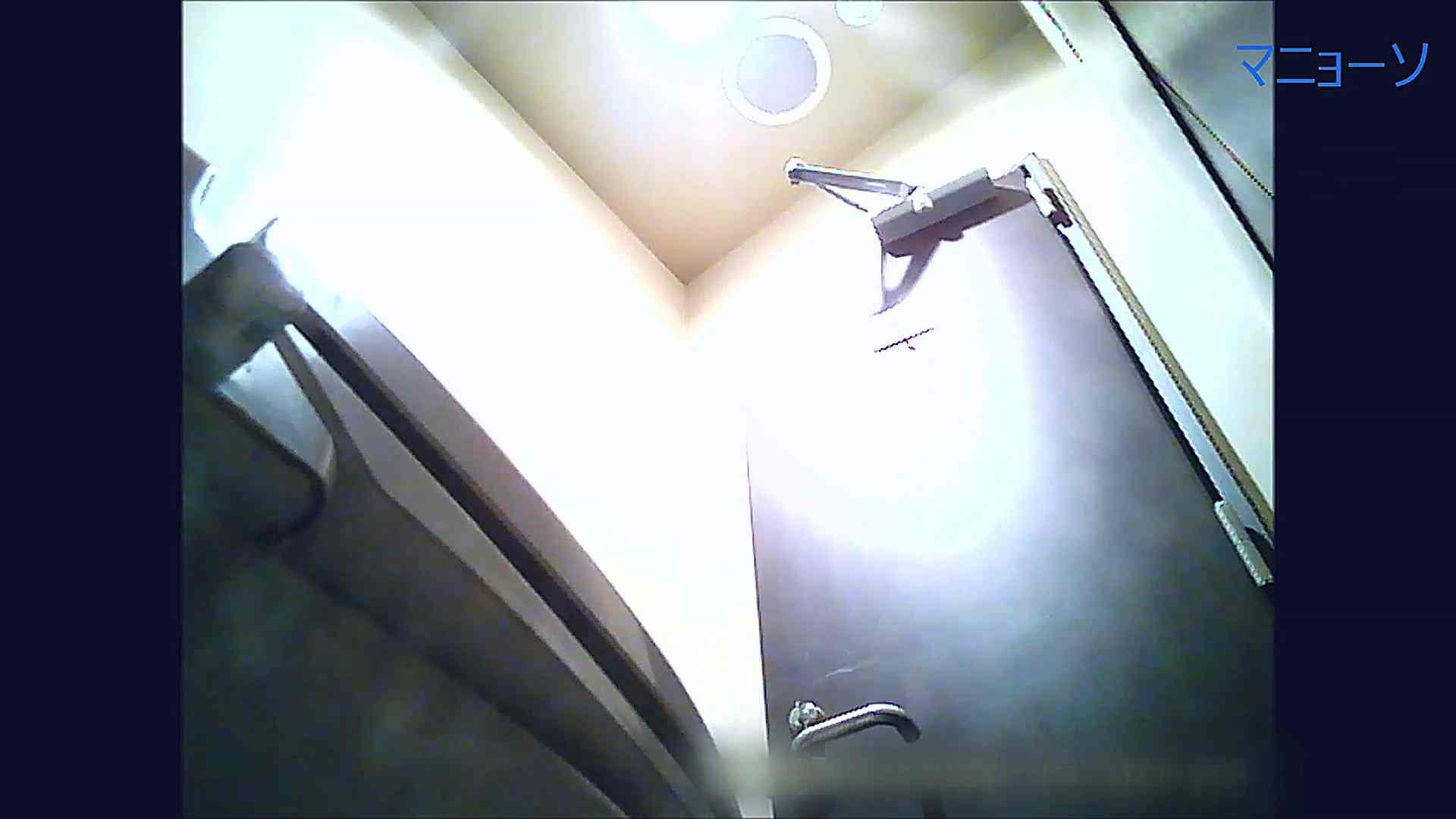 トイレでひと肌脱いでもらいました (JD編)Vol.03 トイレ   OLの実態  42pic 39