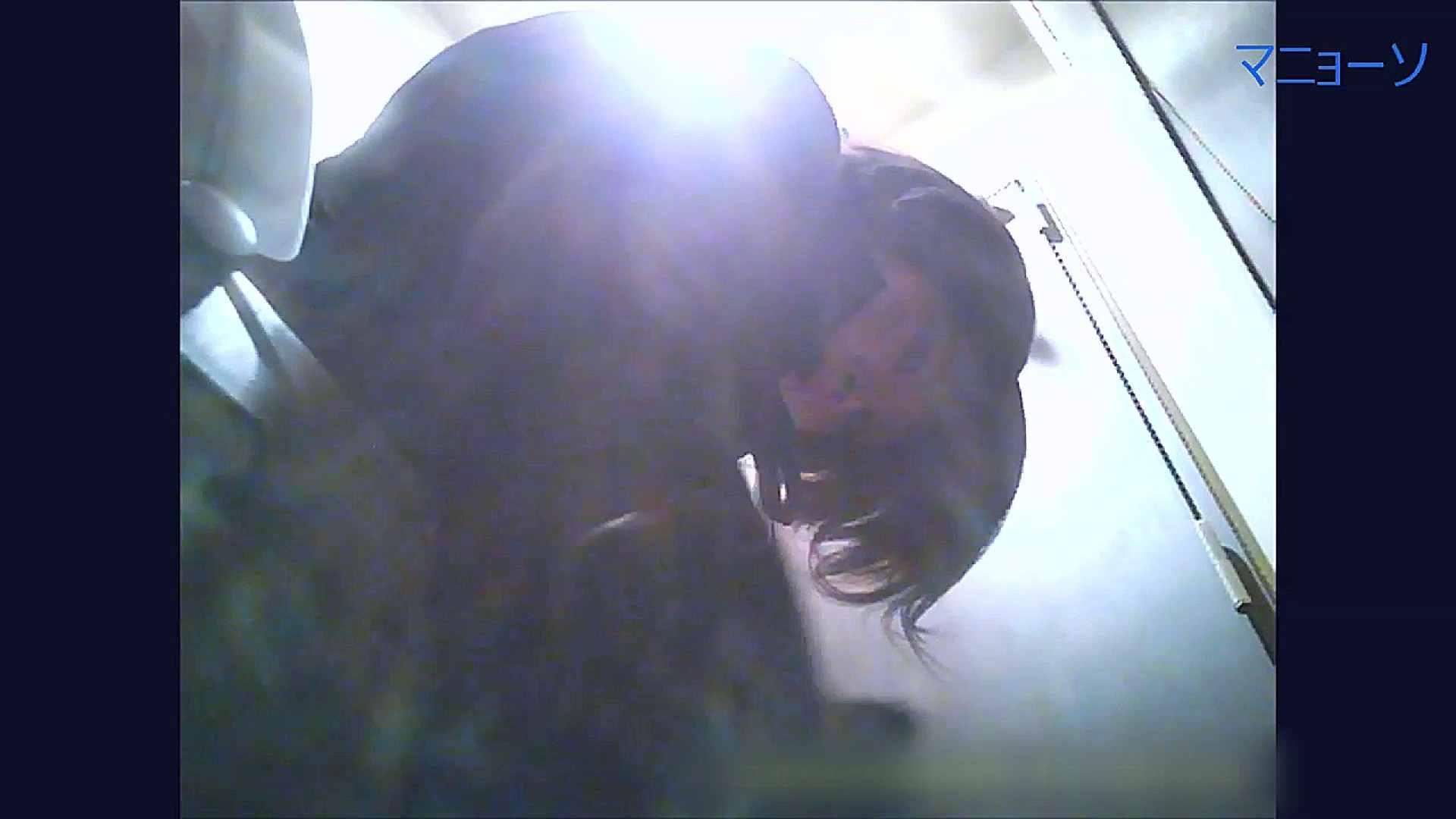 トイレでひと肌脱いでもらいました (OL編)Vol.07 トイレ  95pic 68