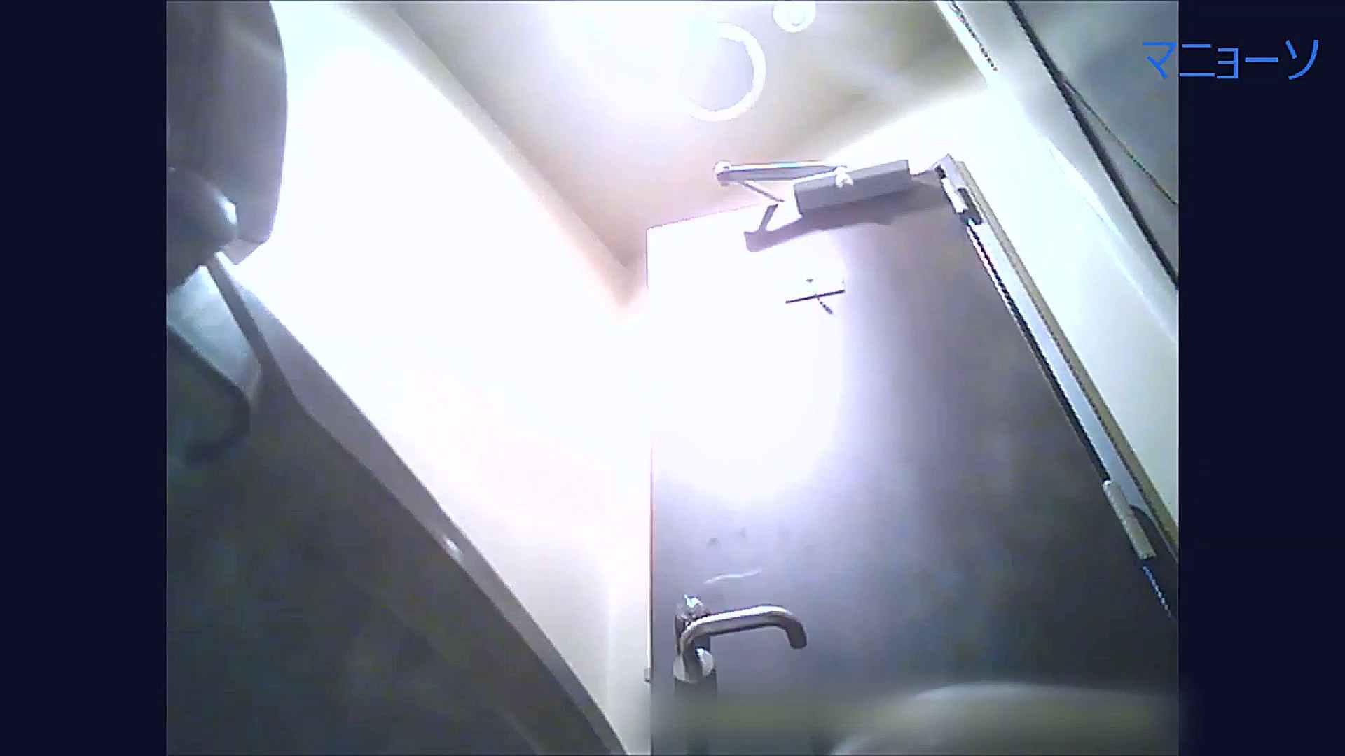 トイレでひと肌脱いでもらいました (OL編)Vol.07 トイレ | OLの実態  95pic 85