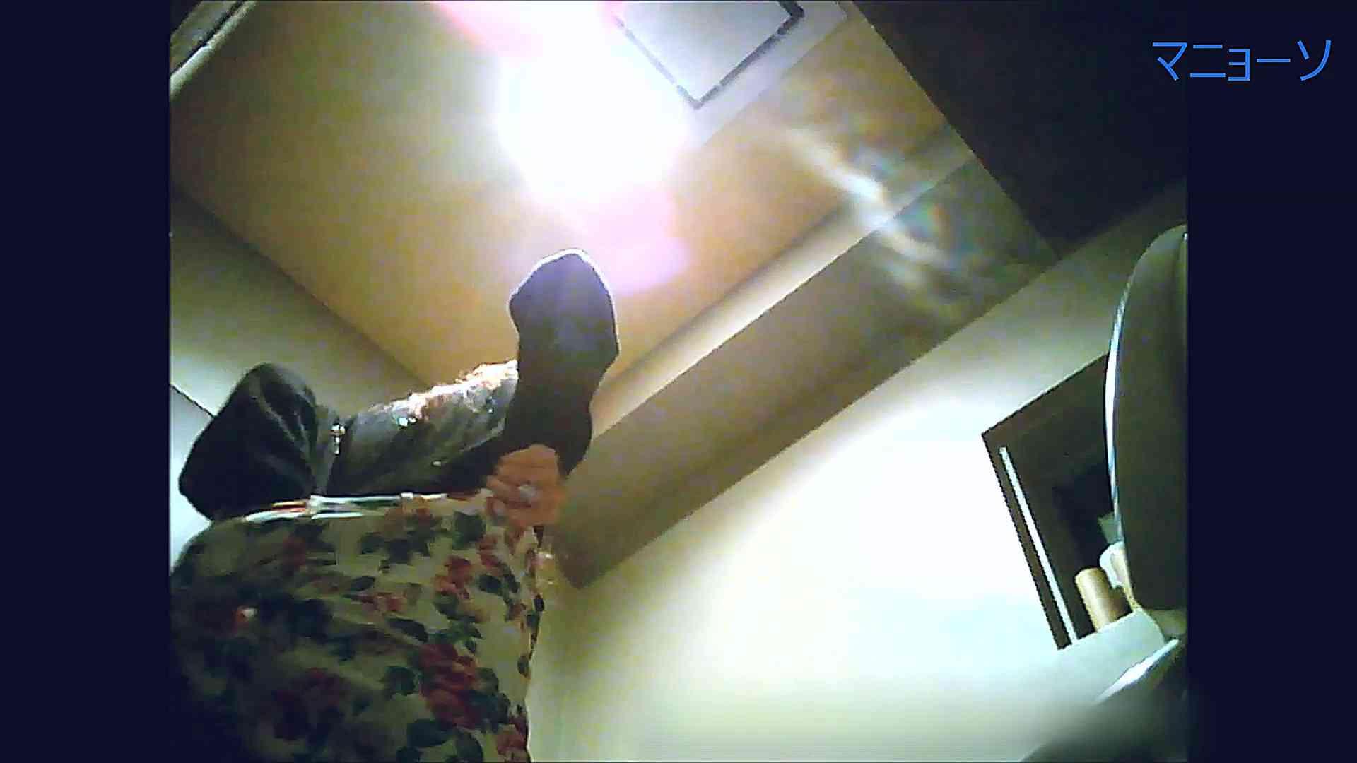 トイレでひと肌脱いでもらいました (OL編)Vol.13 トイレ | OLの実態  95pic 67