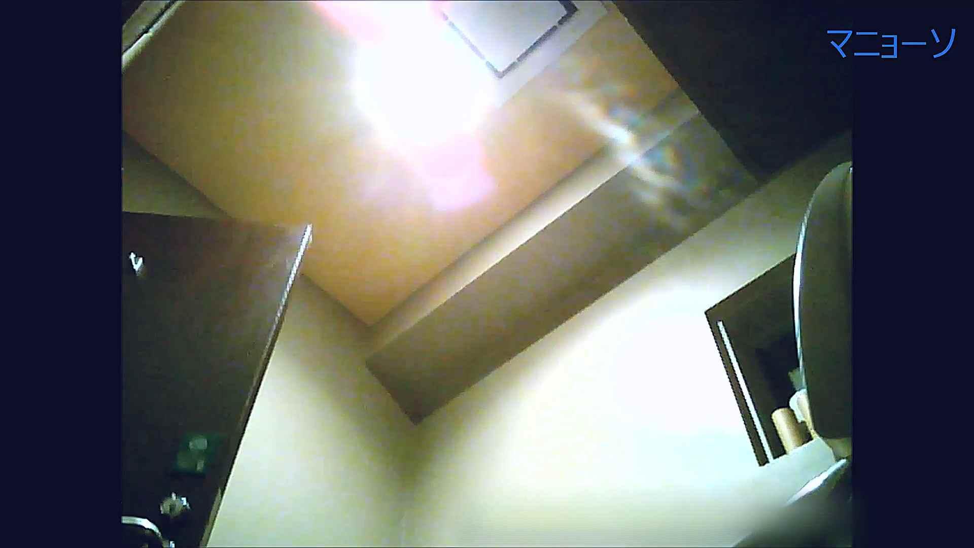 トイレでひと肌脱いでもらいました (OL編)Vol.13 トイレ  95pic 74