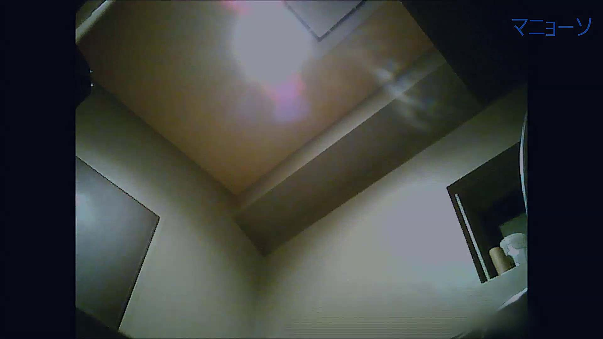 トイレでひと肌脱いでもらいました (OL編)Vol.13 トイレ  95pic 94