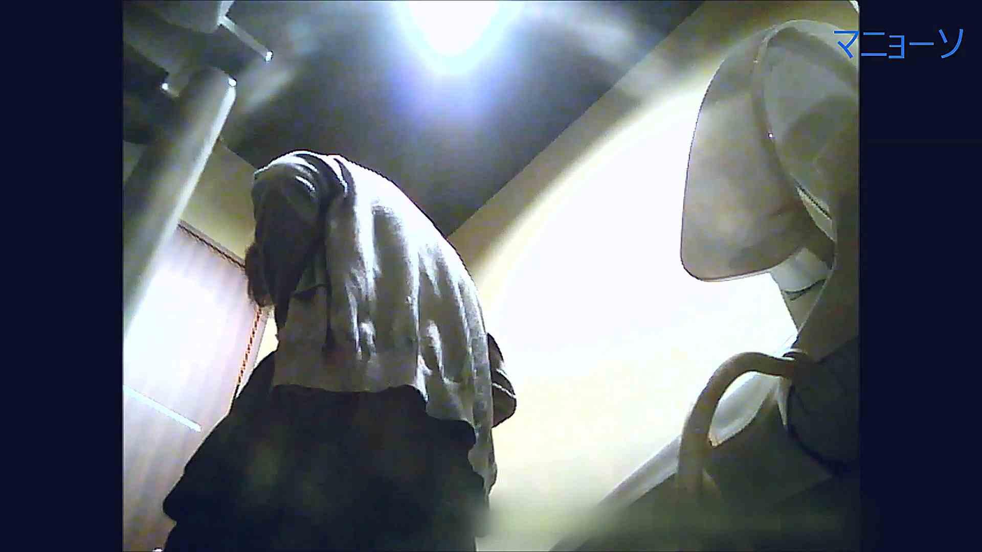 トイレでひと肌脱いでもらいました (OL編)Vol.14 OLの実態  72pic 14