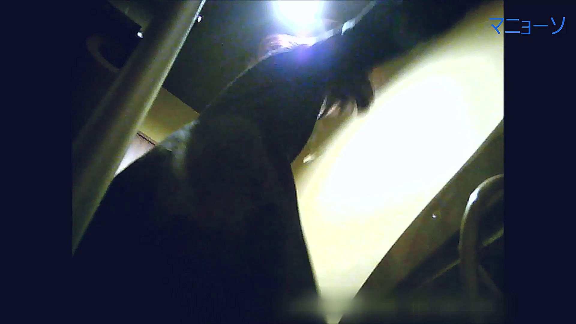 トイレでひと肌脱いでもらいました (OL編)Vol.14 OLの実態  72pic 36