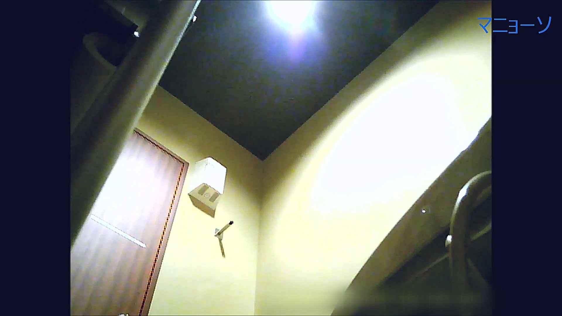 トイレでひと肌脱いでもらいました (OL編)Vol.14 OLの実態  72pic 70