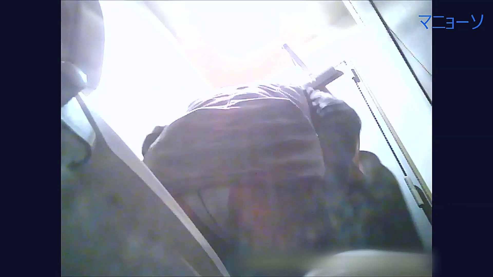 トイレでひと肌脱いでもらいました (番外編)Vol.02 OLの実態 盗撮オメコ無修正動画無料 40pic 14