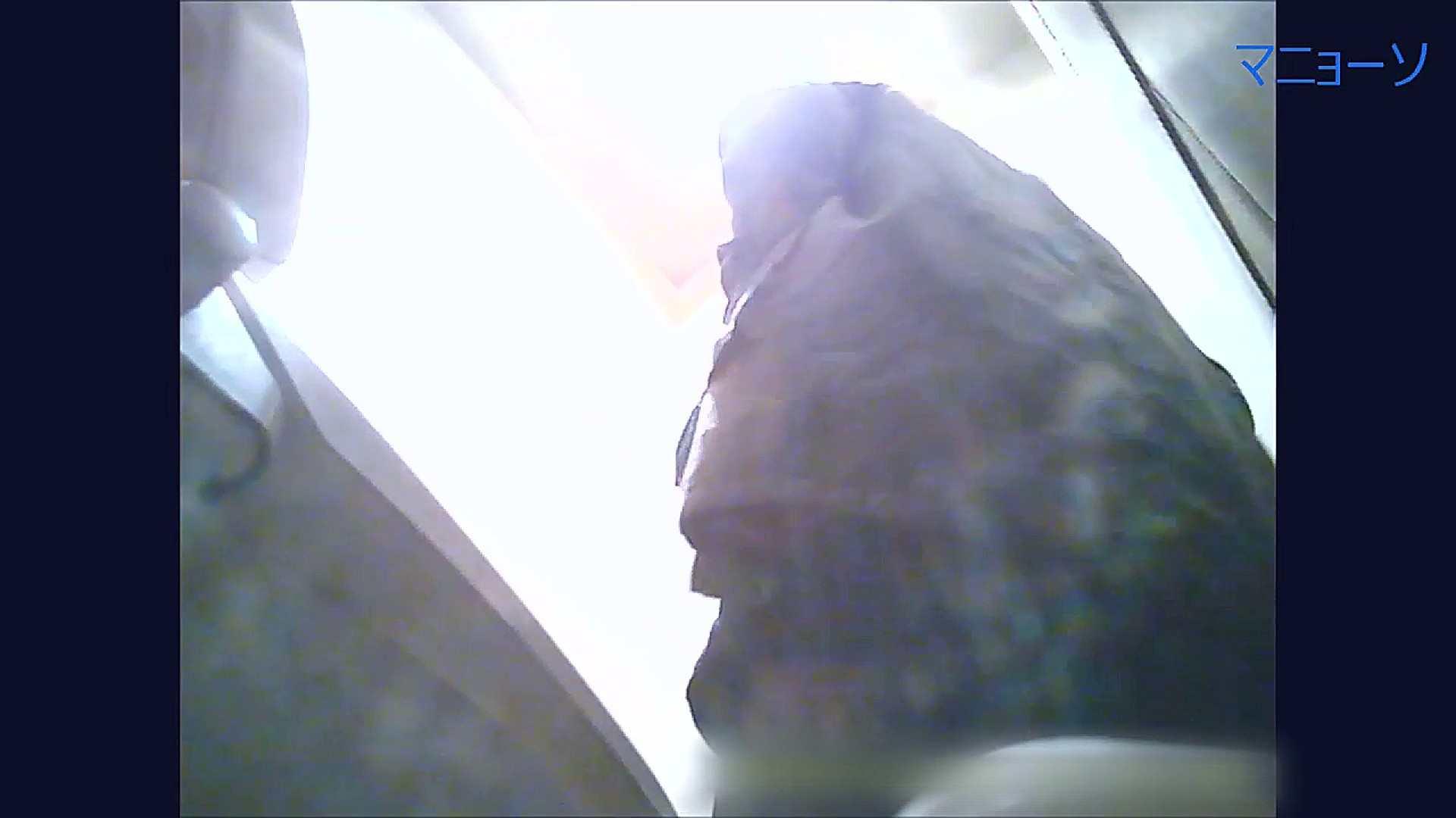 トイレでひと肌脱いでもらいました (番外編)Vol.02 盗撮  40pic 15