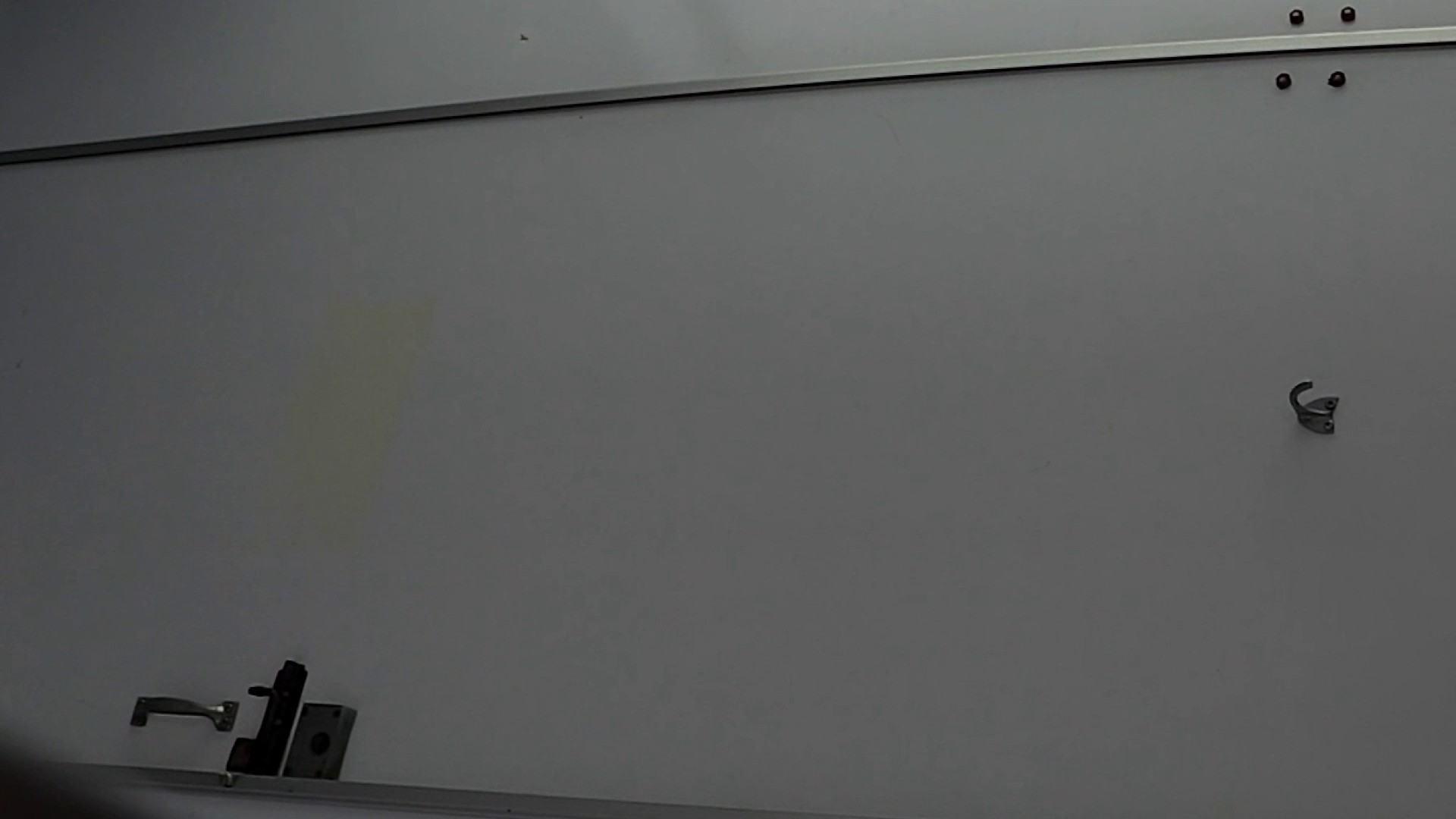 なんだこれ!! Vol.08 遂に美女登場!! OLの実態 盗撮エロ画像 93pic 82