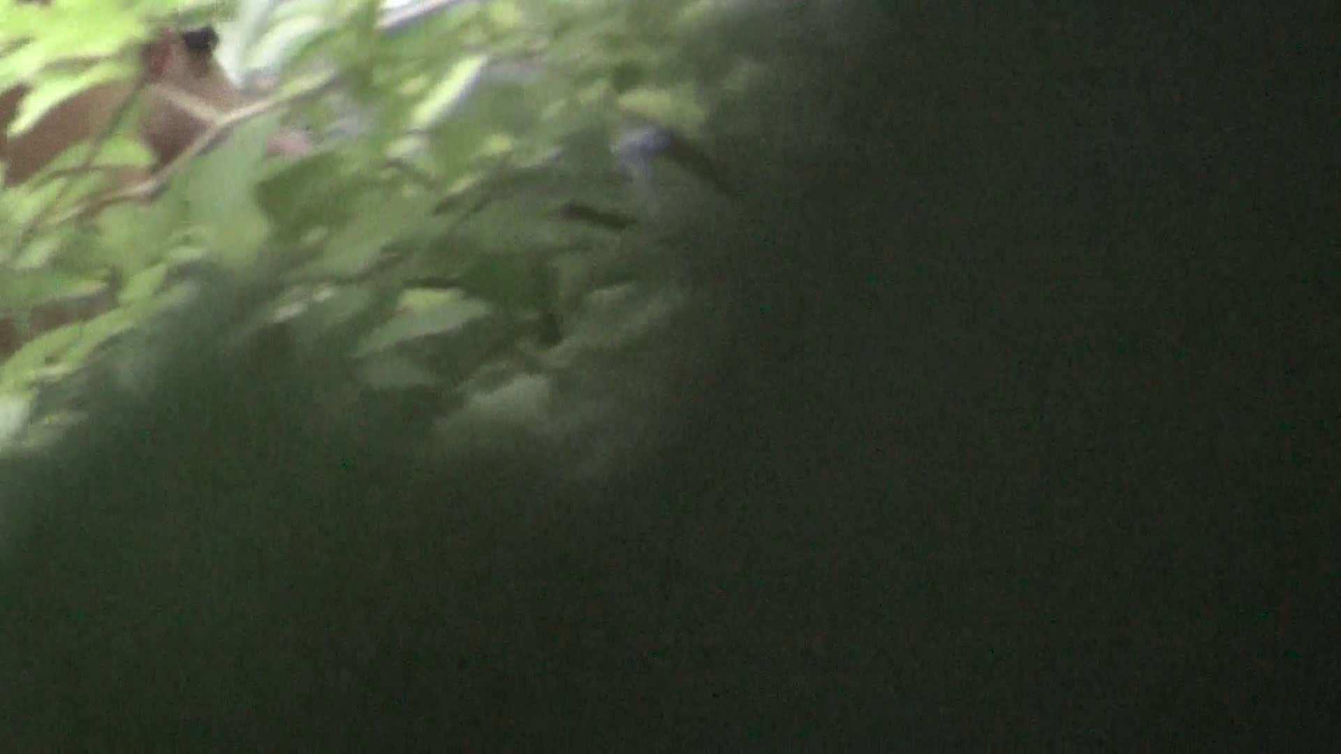 ハイビジョンVol.24 乳首にインパクトあり過ぎ美人 OLの実態 覗きぱこり動画紹介 54pic 37