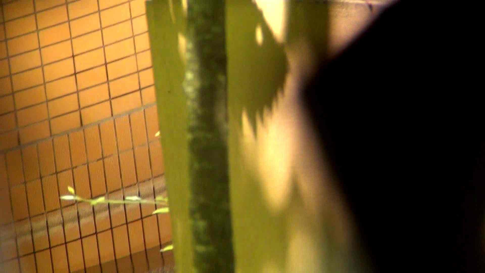 Vol.37 オデブと妊婦とokaasann 潜伏露天風呂 盗撮ワレメ無修正動画無料 61pic 35