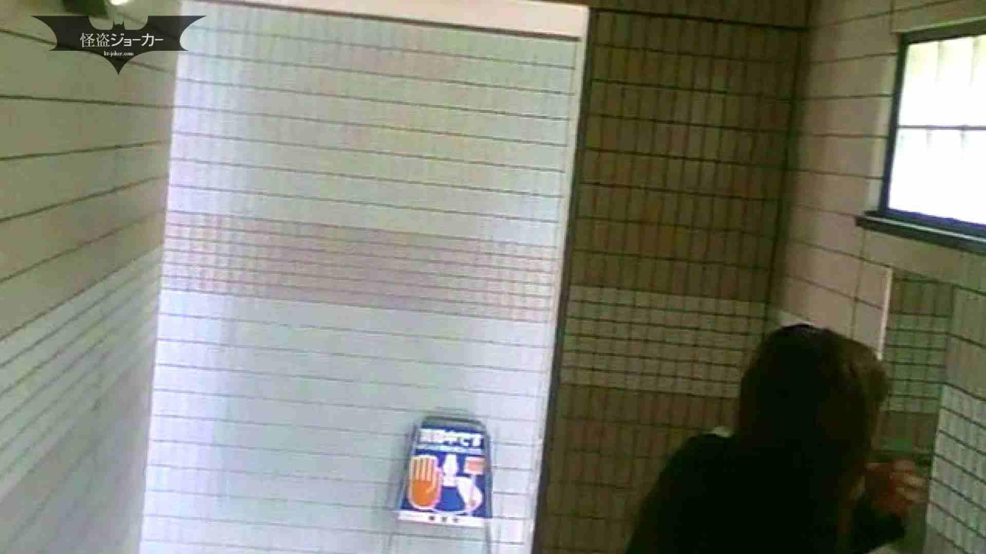 夏の思い出浜辺トイレ盗撮Vol.06 トイレ 性交動画流出 39pic 13
