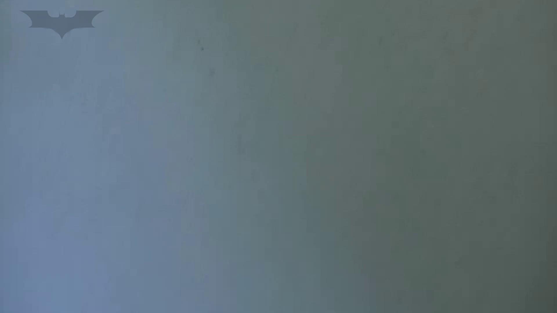 夏の思い出浜辺トイレ盗撮Vol.27 OLの実態 隠し撮りセックス画像 102pic 12