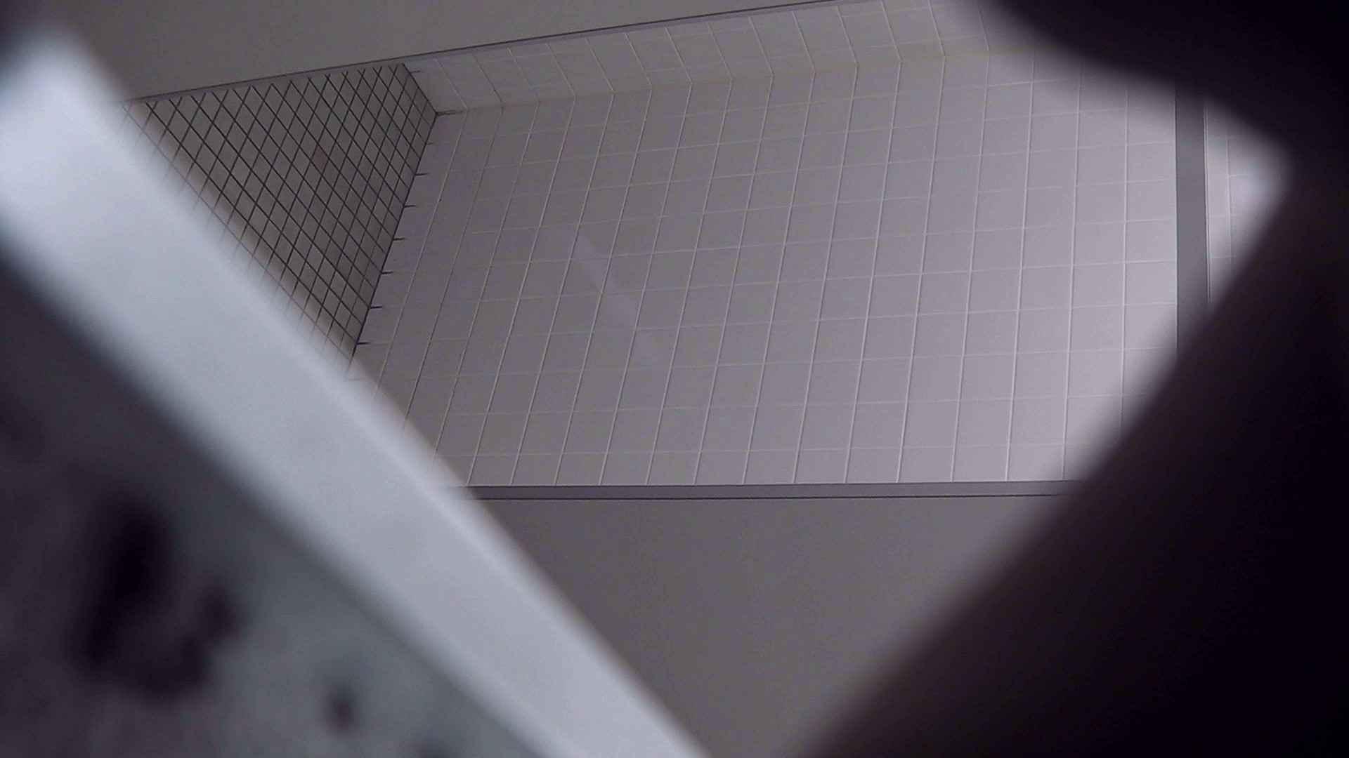 お銀さんの「洗面所突入レポート!!」Nol.4 美人 隠し撮りオマンコ動画紹介 84pic 17