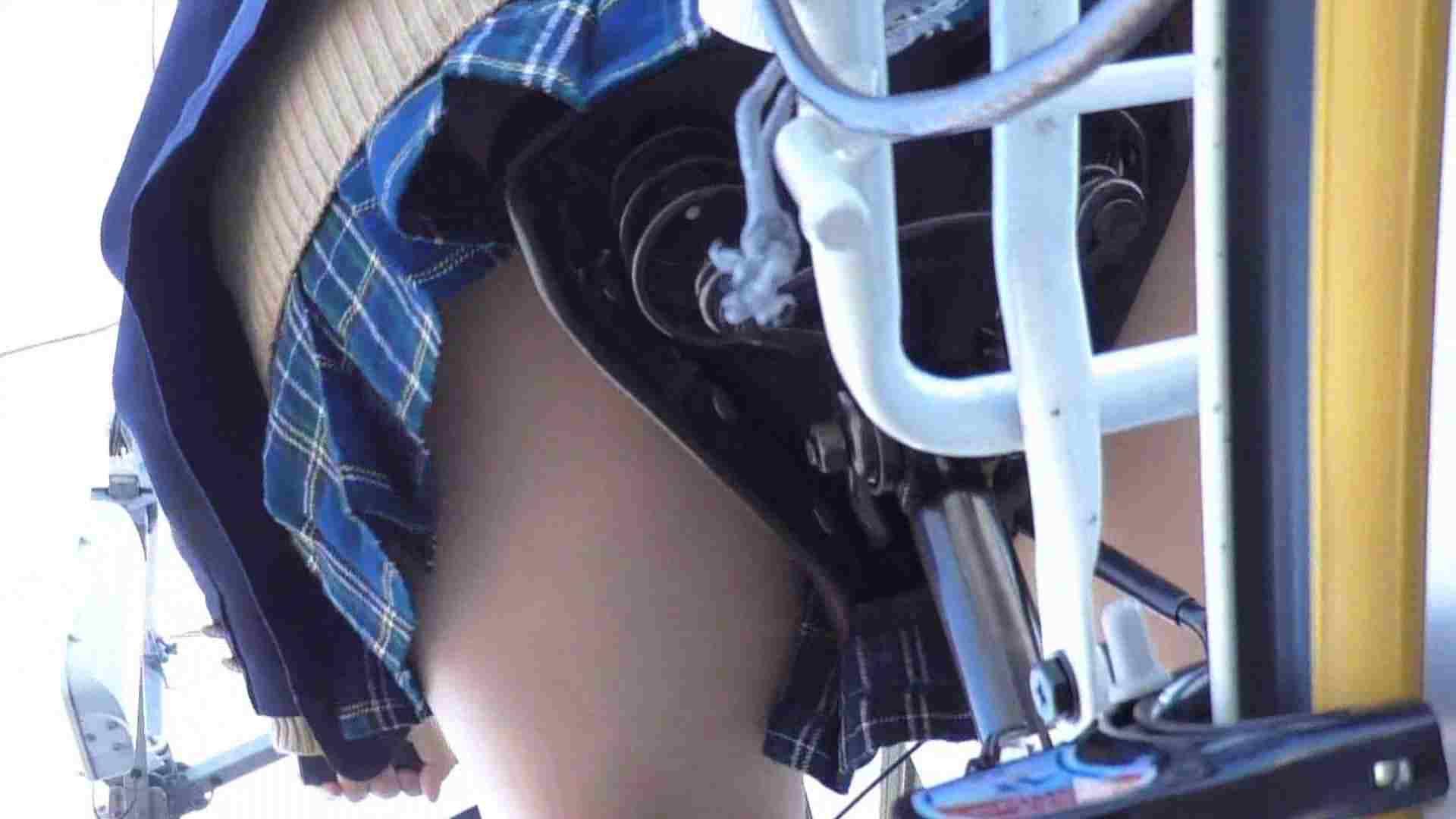 巨乳 乳首:自転車パンチラ Vol.03:怪盗ジョーカー