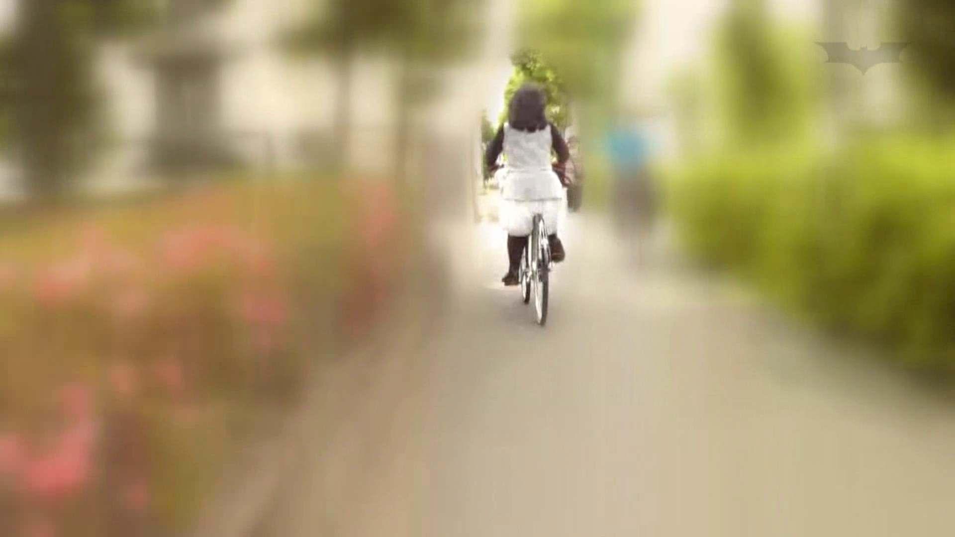 自転車パンチラ Vol.06 OLの実態  86pic 18