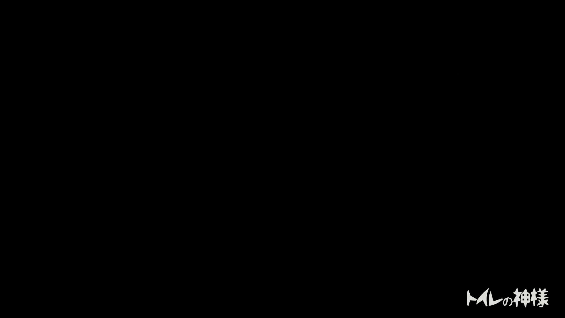 ▲2017_28位▲ ビアガーデン!美人が6人!トイレの神様 Vol.11 美人 オメコ動画キャプチャ 63pic 47