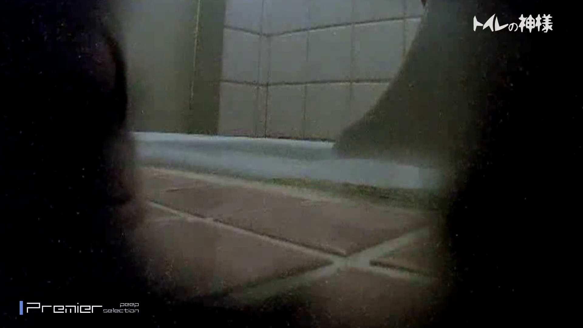 kyouko排泄 うんこをたくさん集めました。トイレの神様 Vol.14 OLの実態 盗撮動画紹介 53pic 42