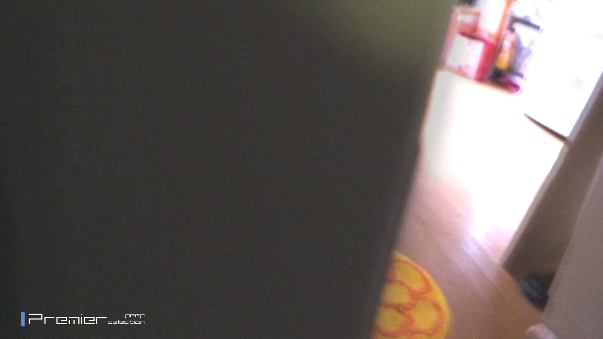 美女達の私生活に潜入!5人の女性の私生活を丸裸 美女 隠し撮りオマンコ動画紹介 67pic 41
